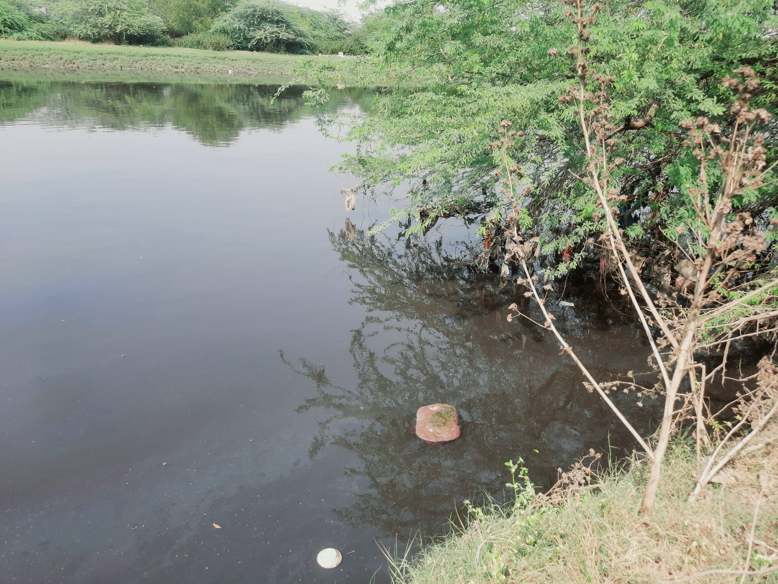 A dirty water lake
