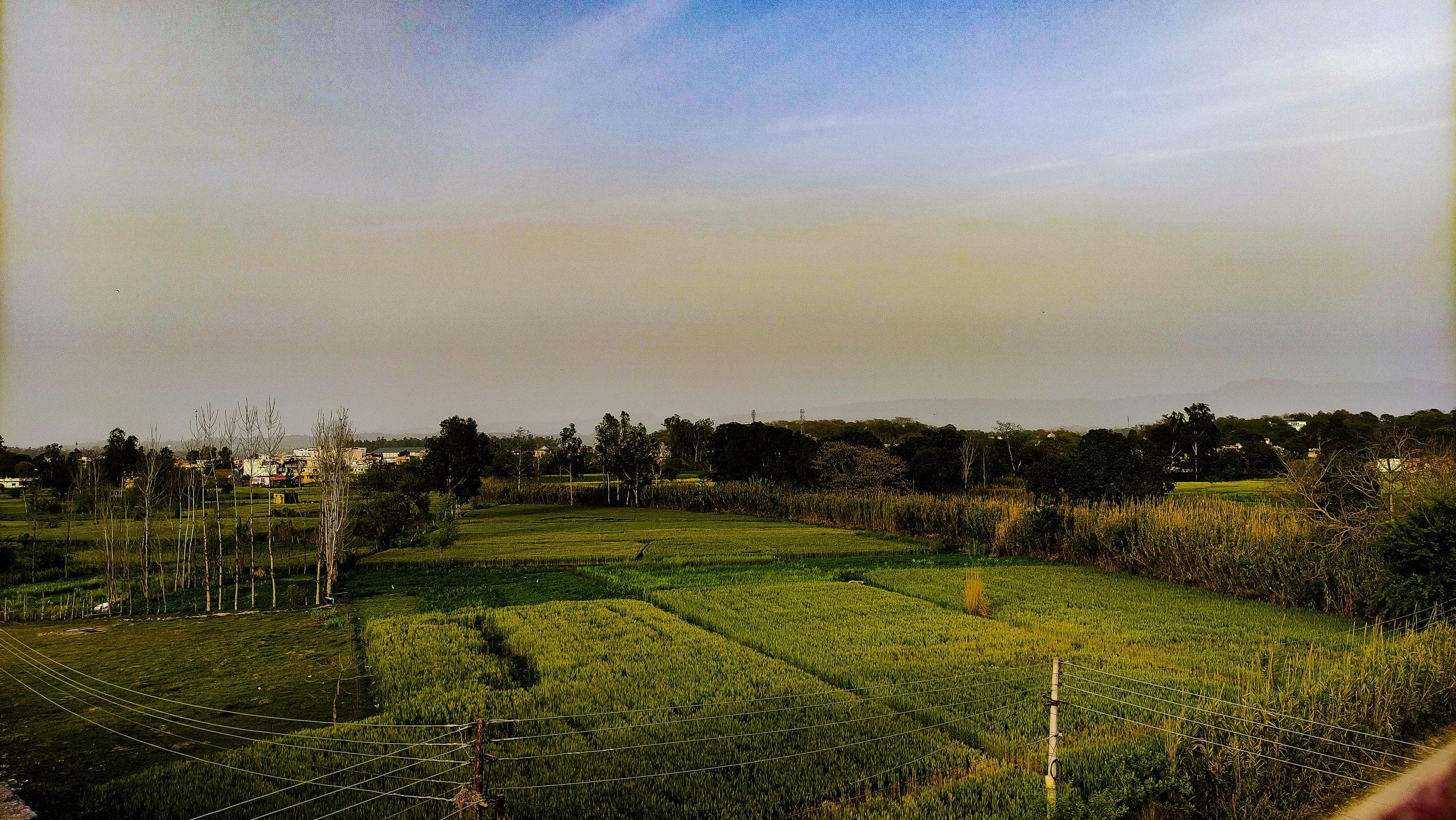 Agricultural land under blue sky