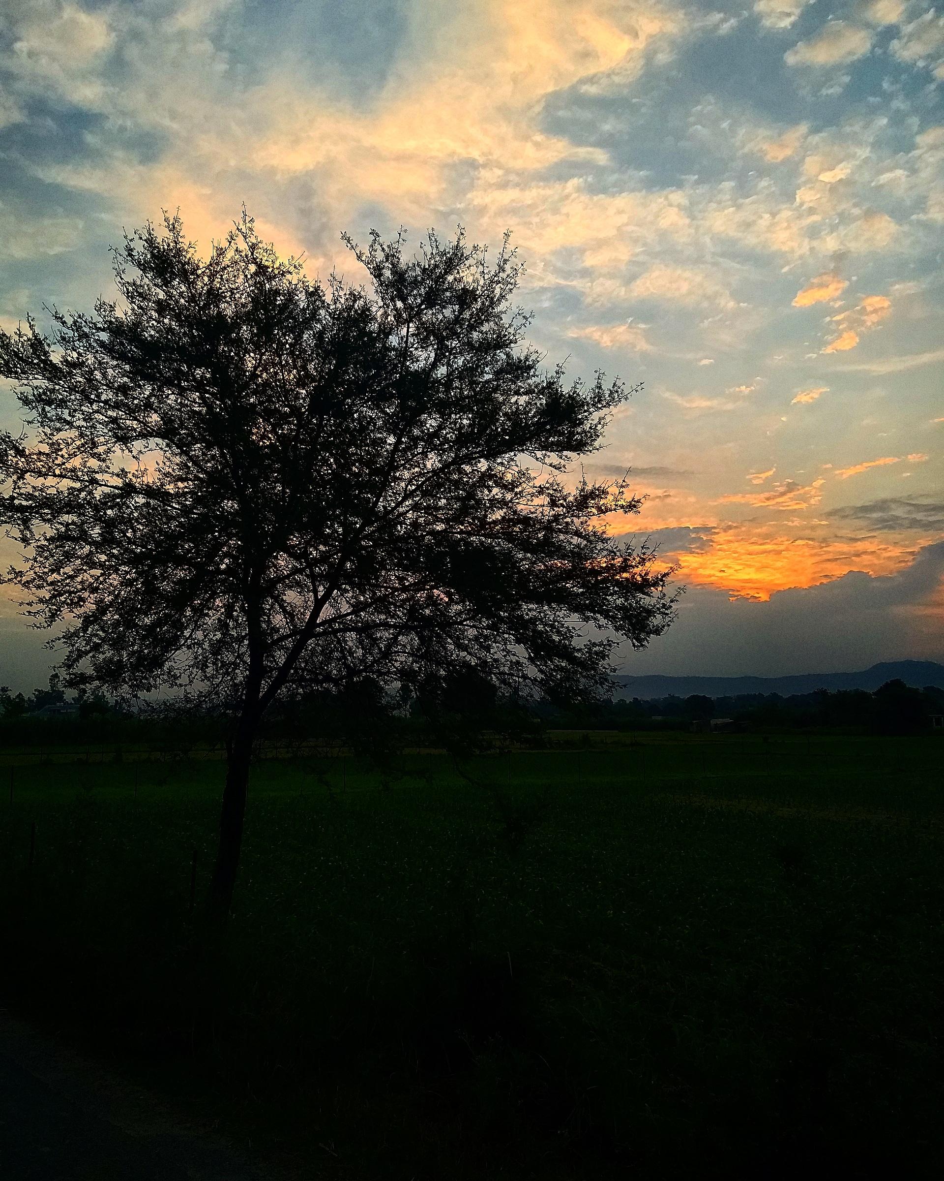 An evening of a villge