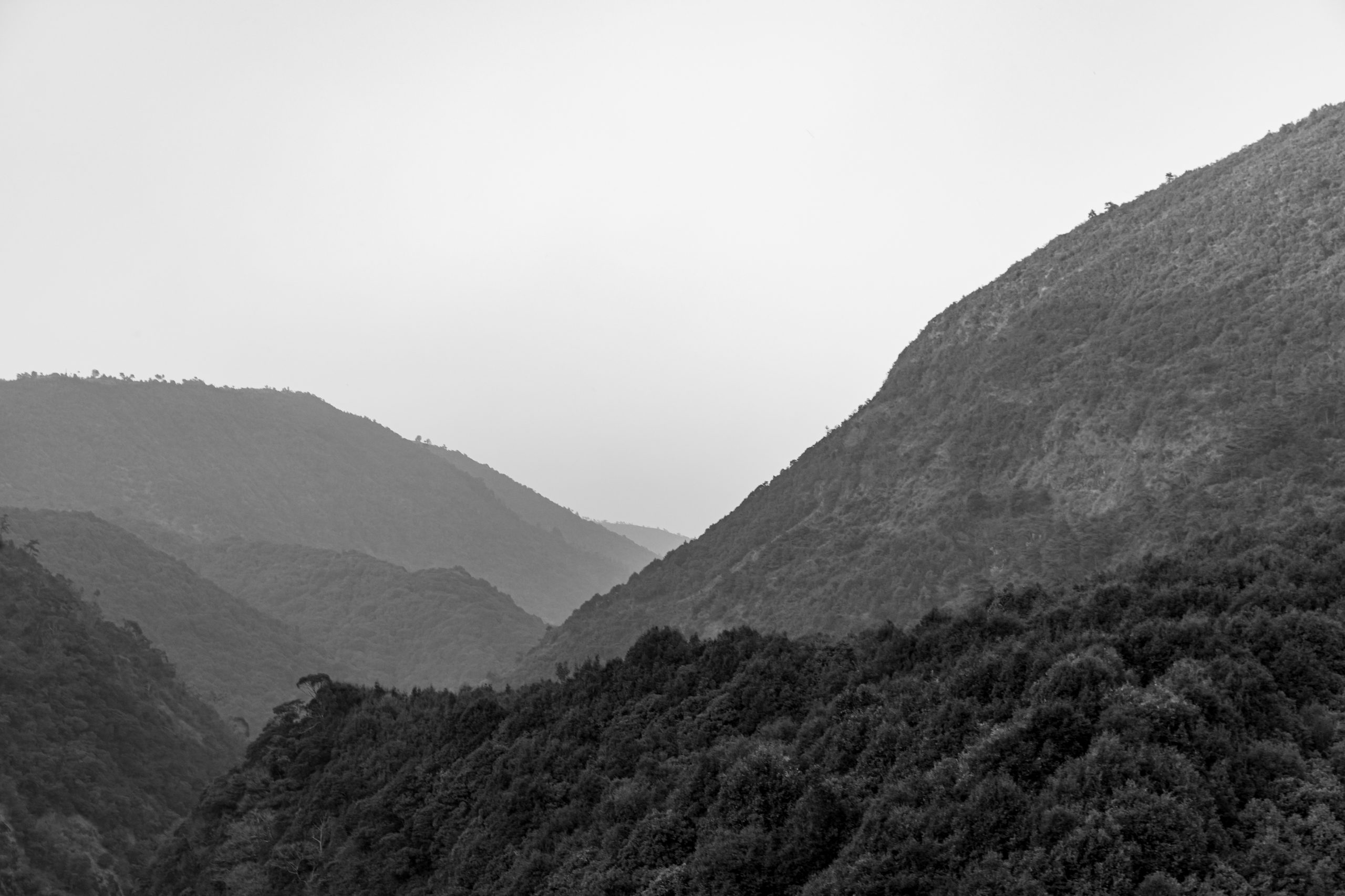 Monochrome landscape of a valley