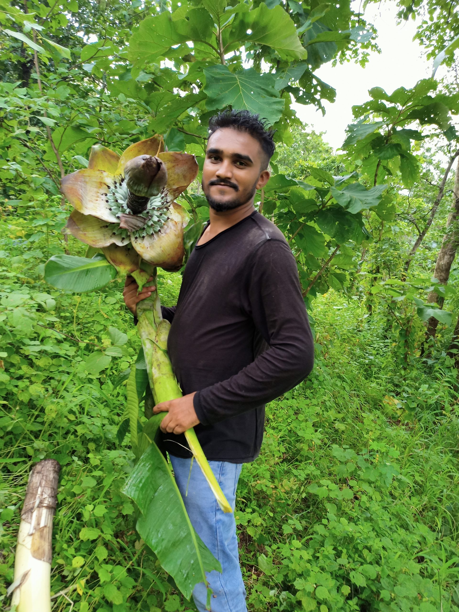 Boy posing with a big flower in forest