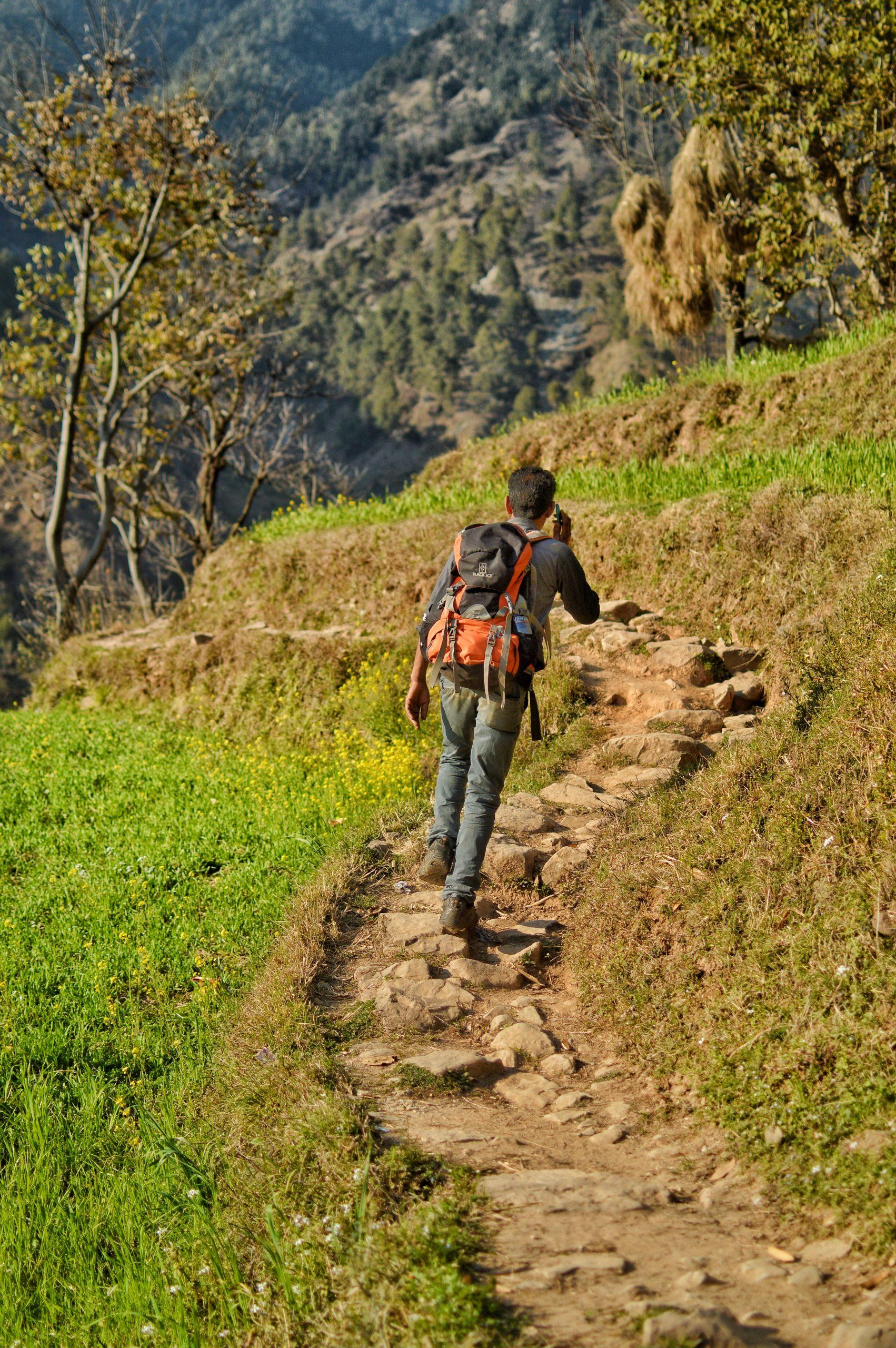 Boy trekking in the hills