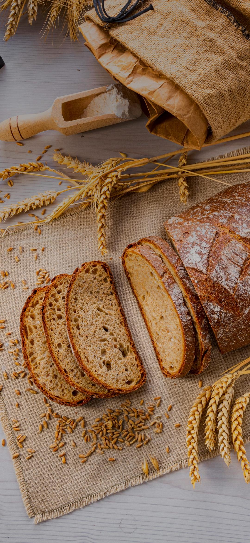 Bread toast biscuits