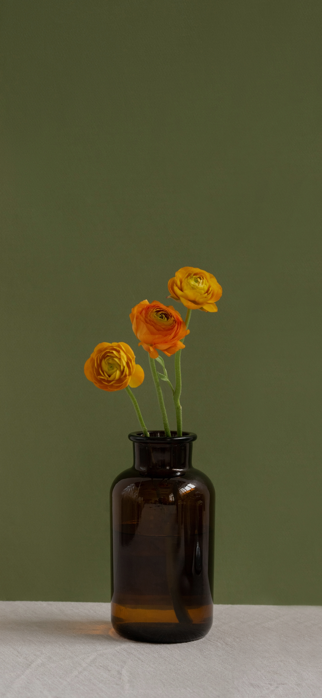 Portrait of yellow roses in the vase