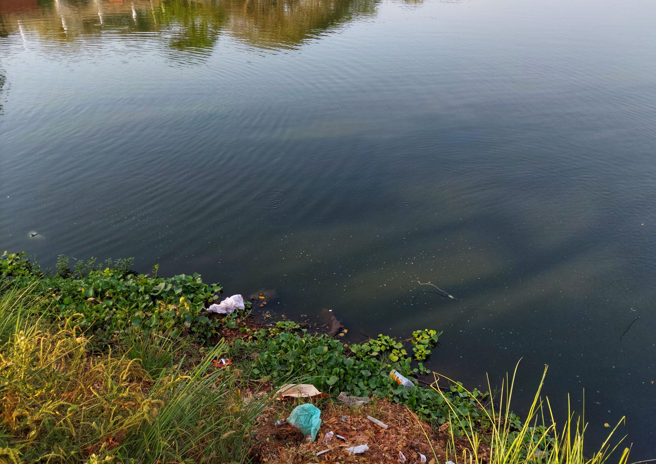 Garbage dumped at a lake shore