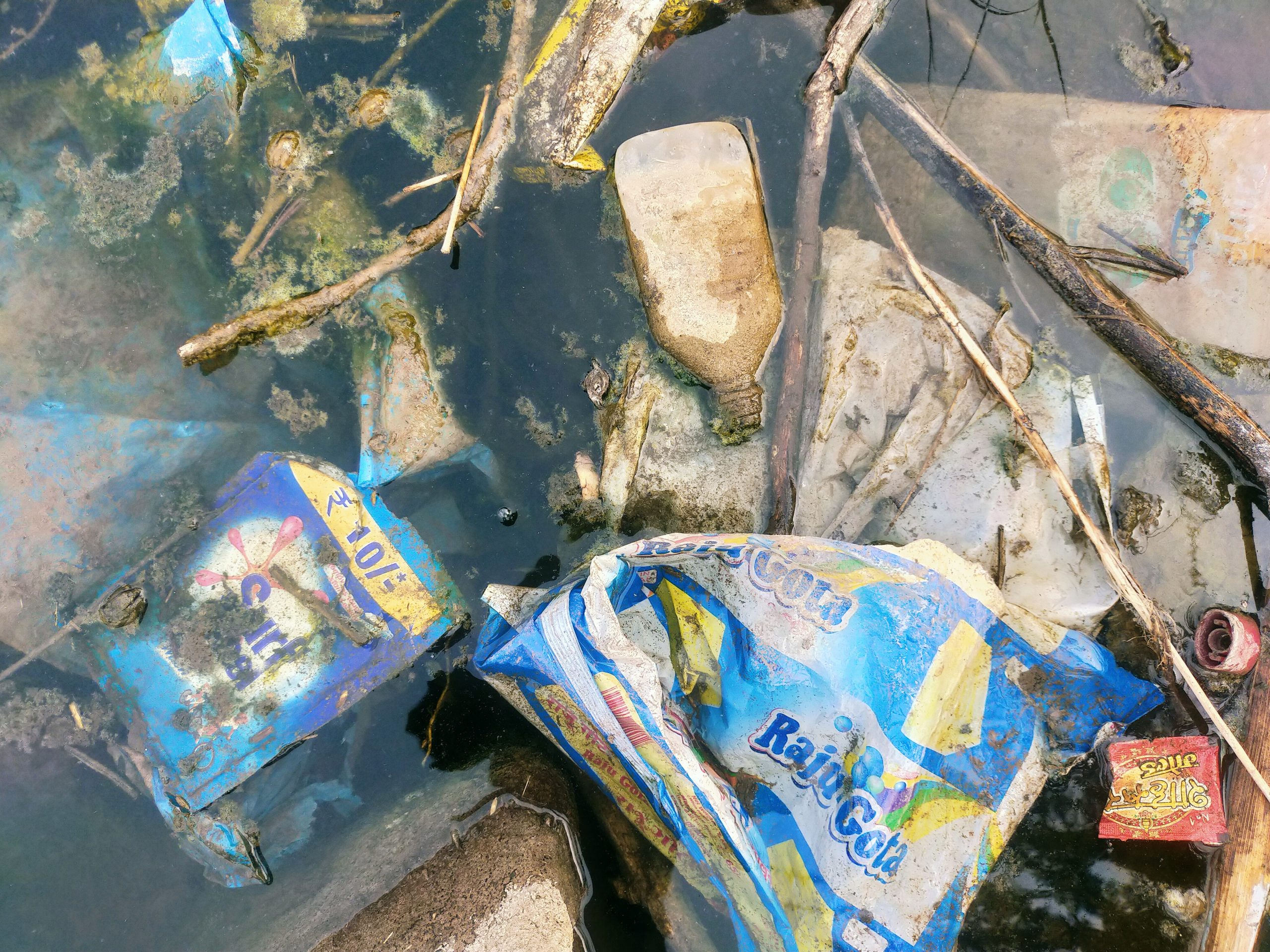 Garbage dumped in a water resource