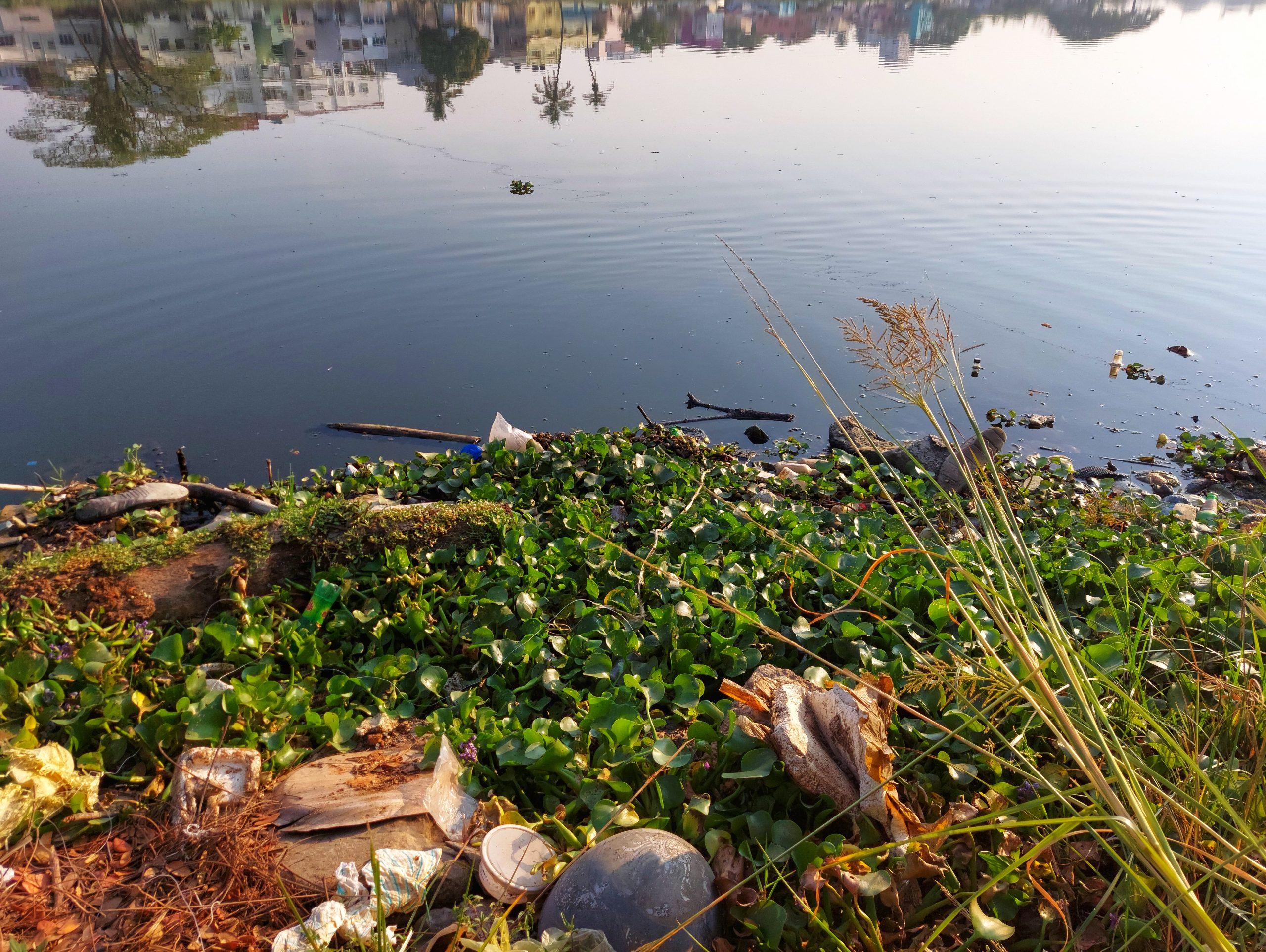 Garbage near a water resource
