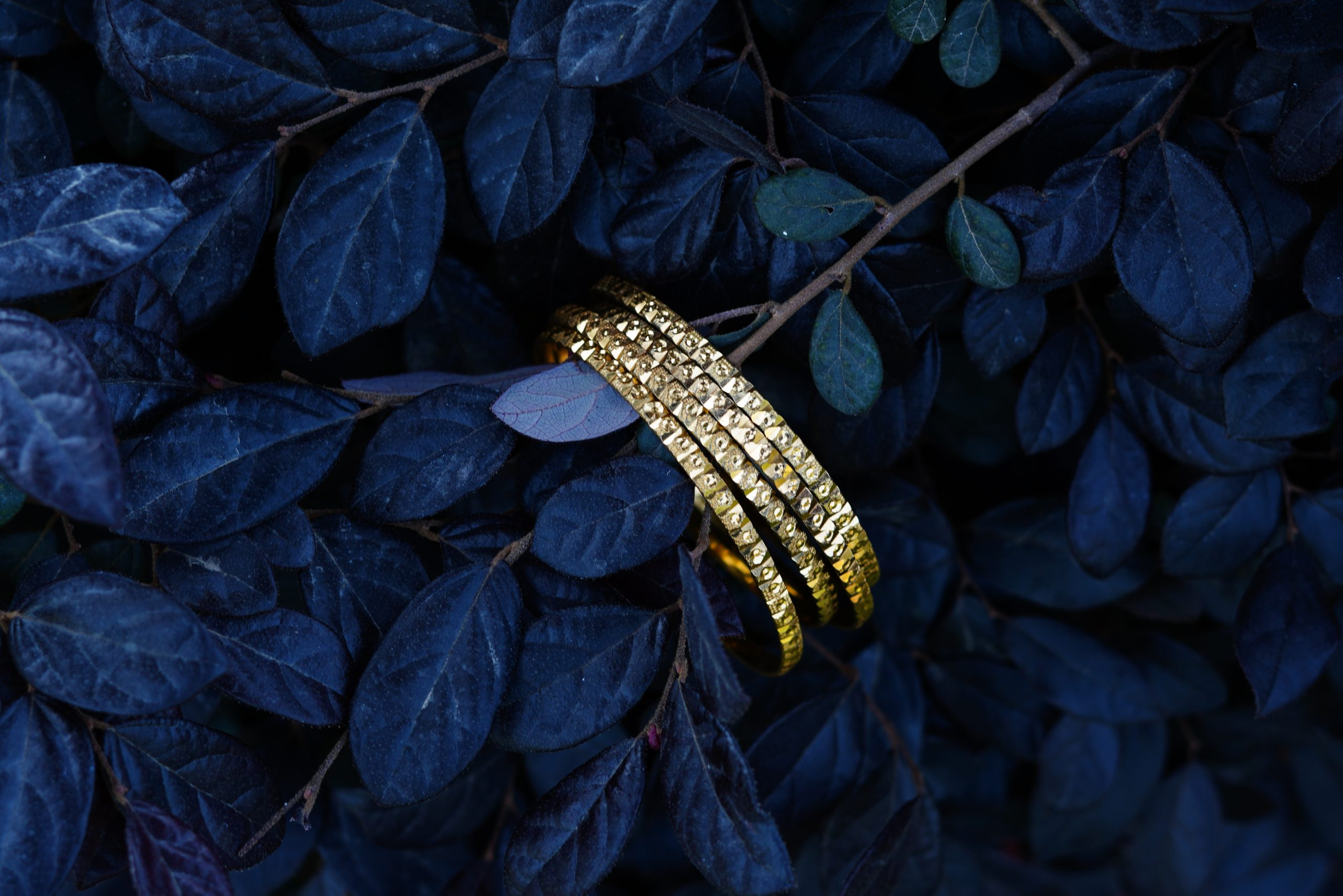 Golden bangles and leaves