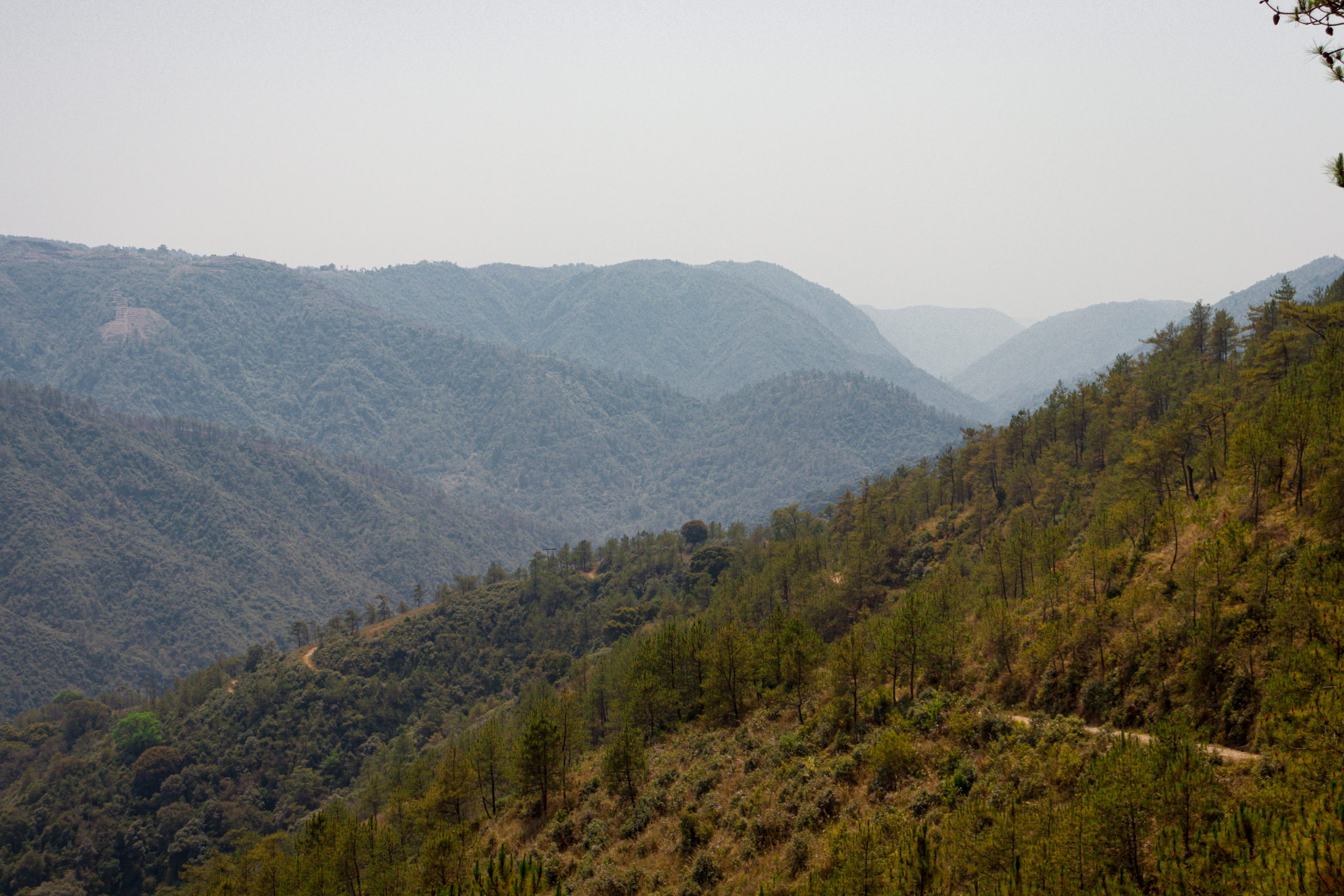 Greenery of mountains