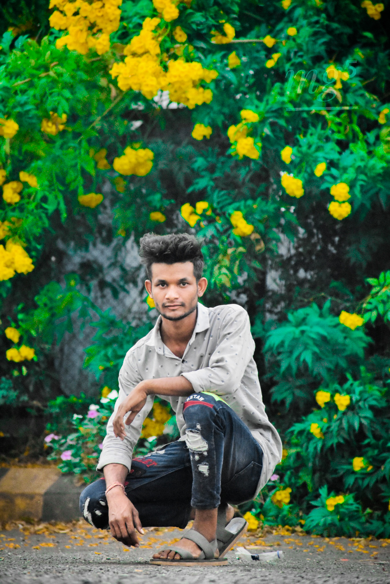 Portrait of a boy sitting in a garden