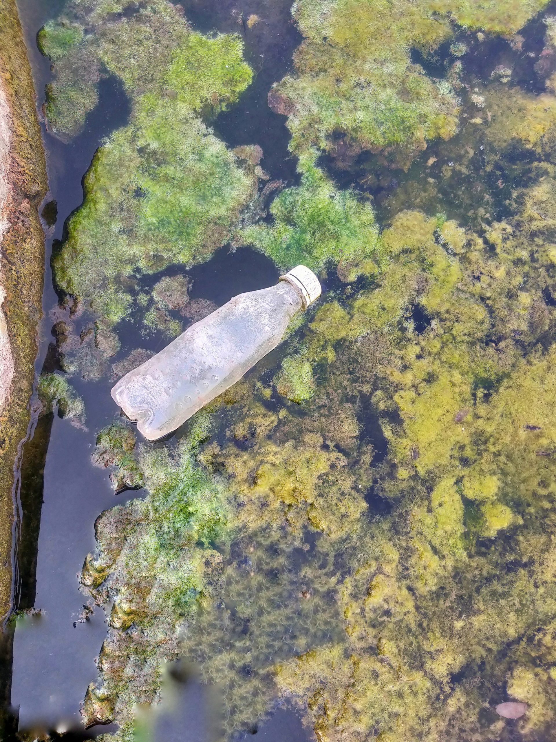 Waste in water