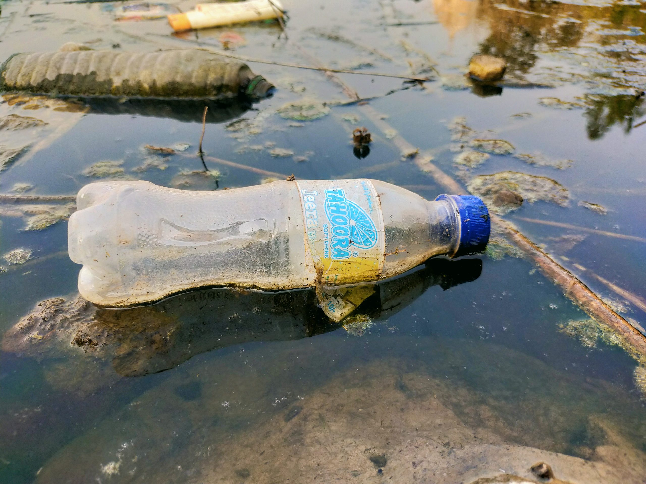 Plastic bottles dumped in a water resource