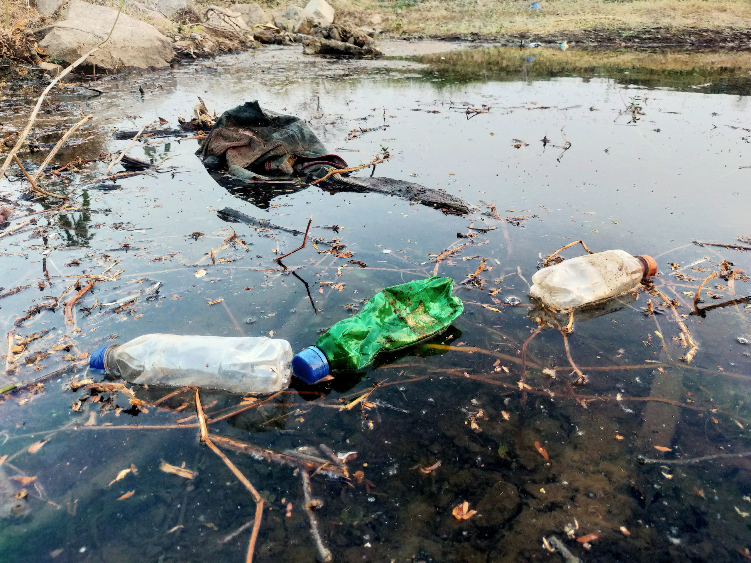 Plastic bottles in a water