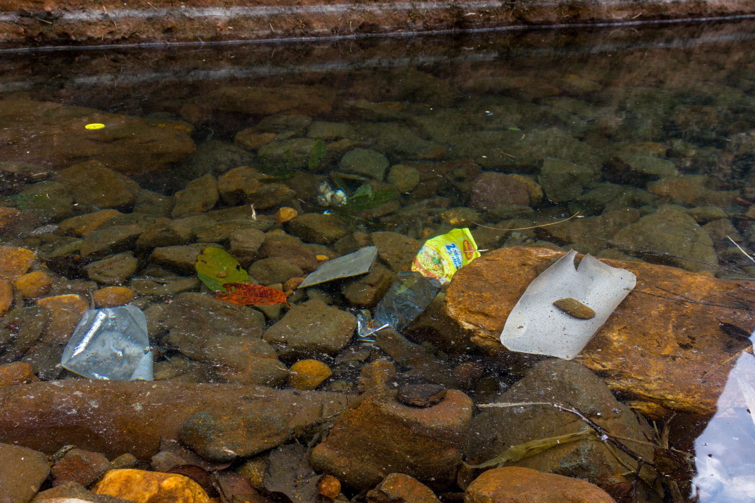 Plastic waste in a water resource