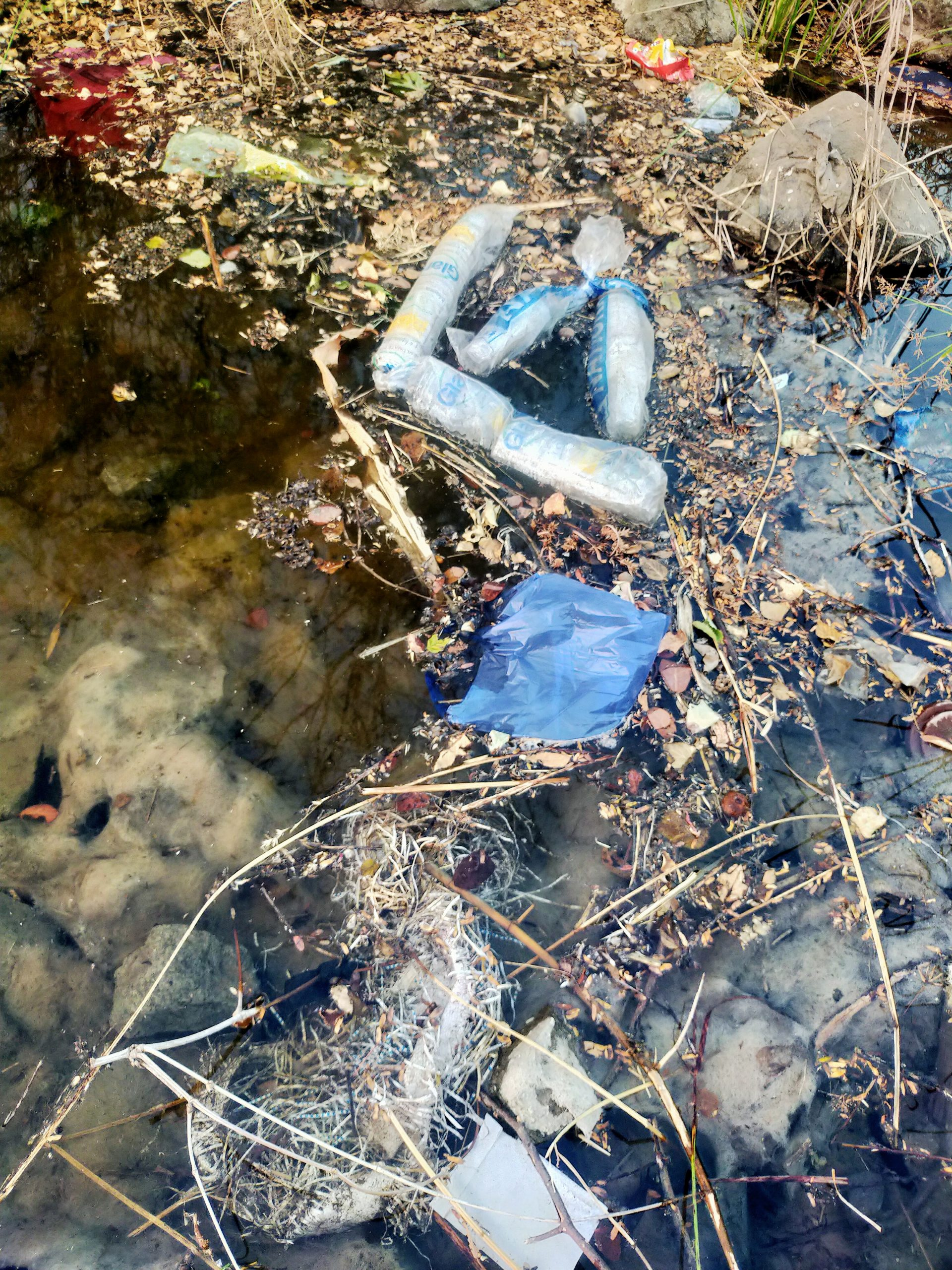 Plastic waste in water