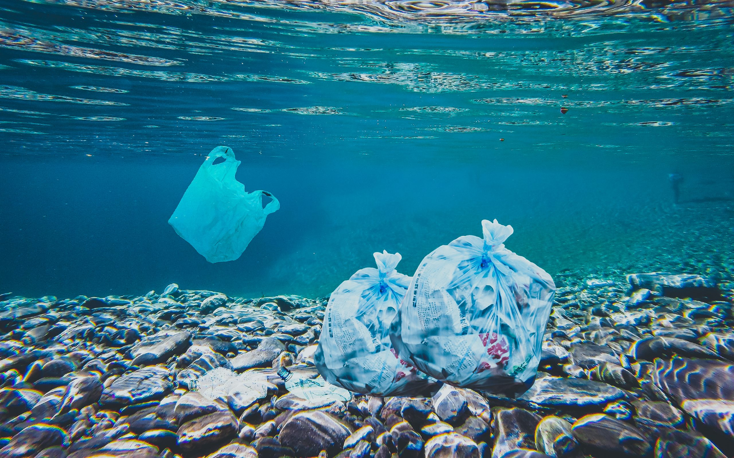 Plastic bags lodging in the underwater