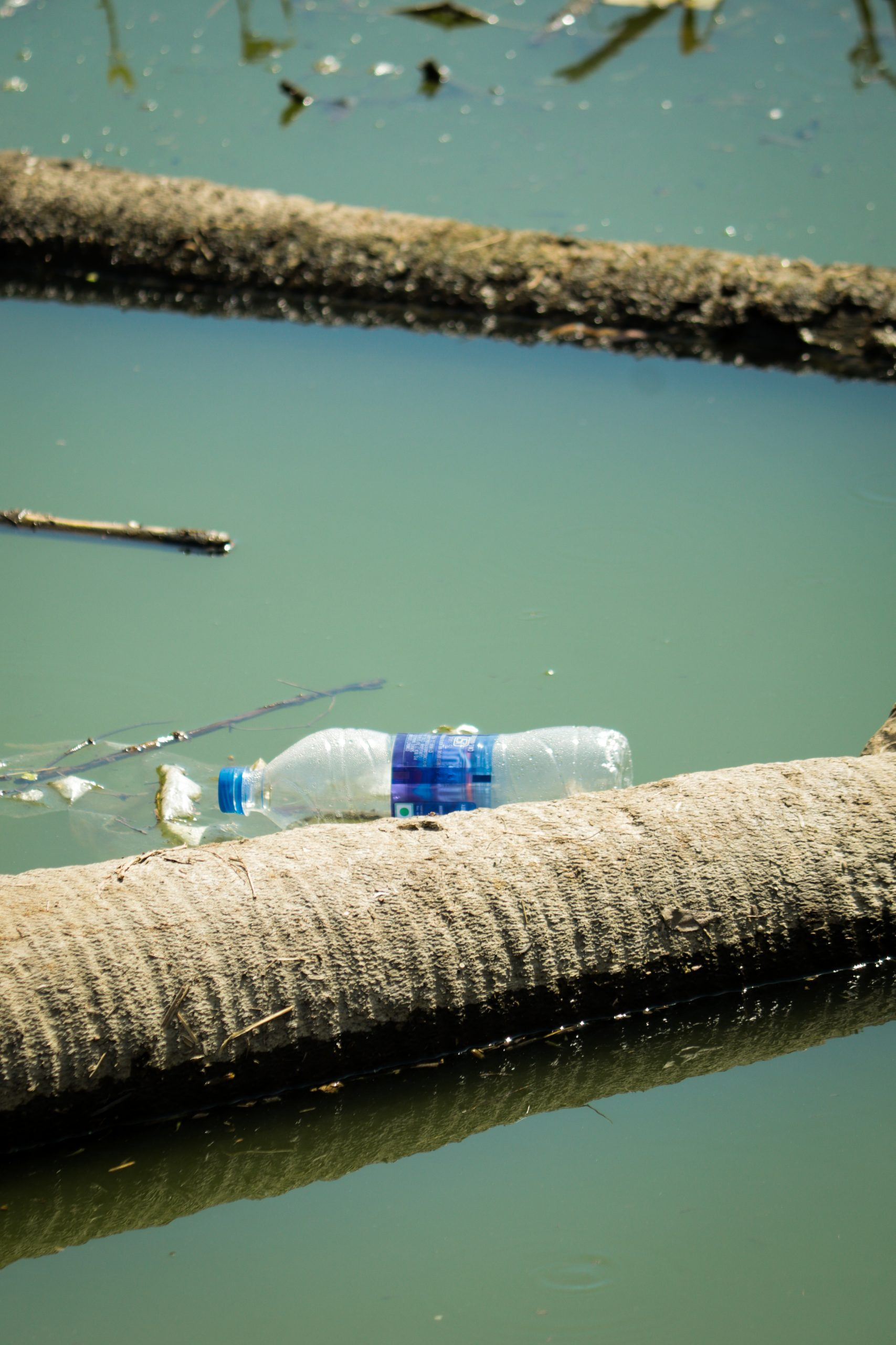 Plastic bottle in a water resource