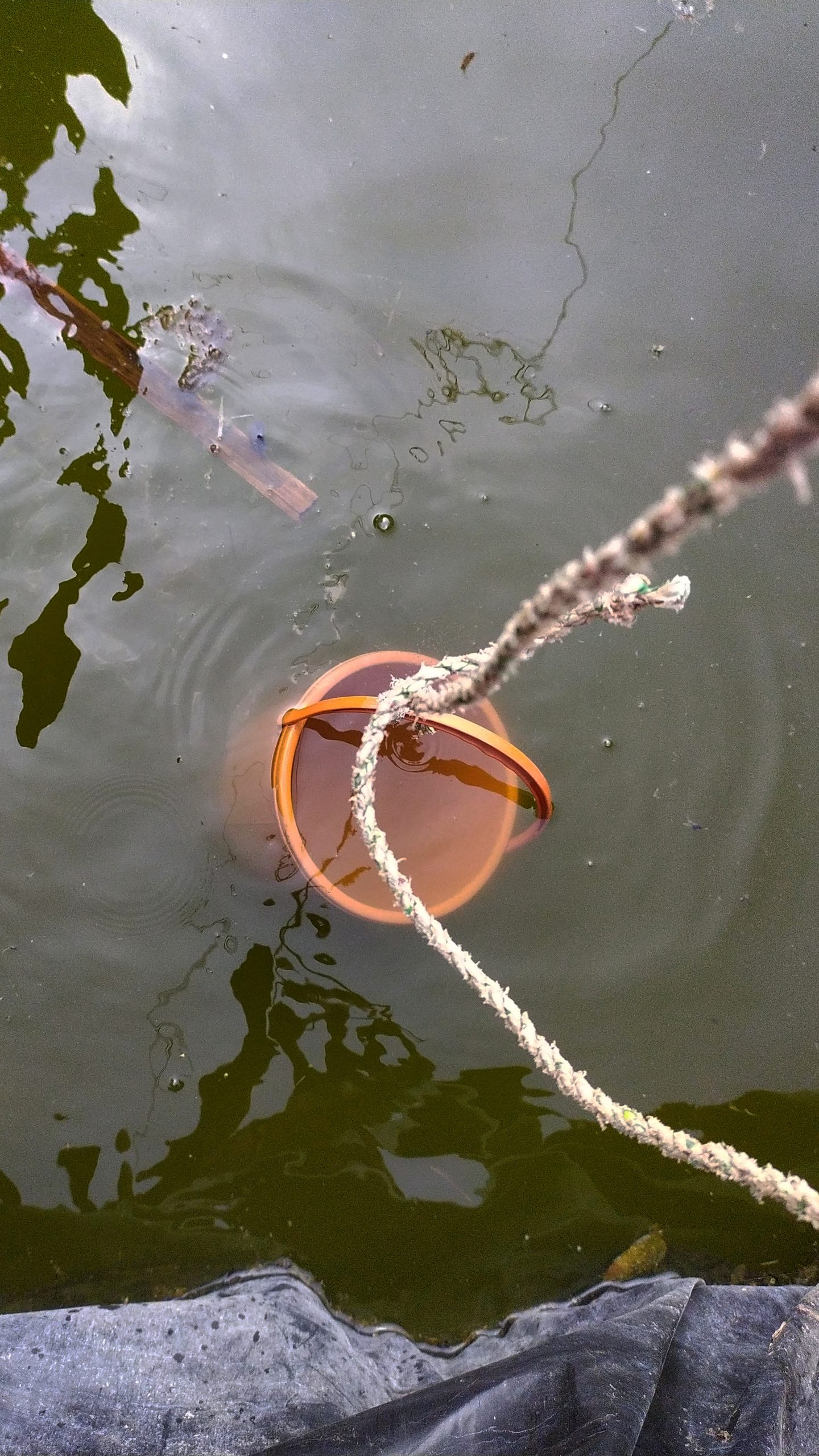 Pulling water from river with bucket
