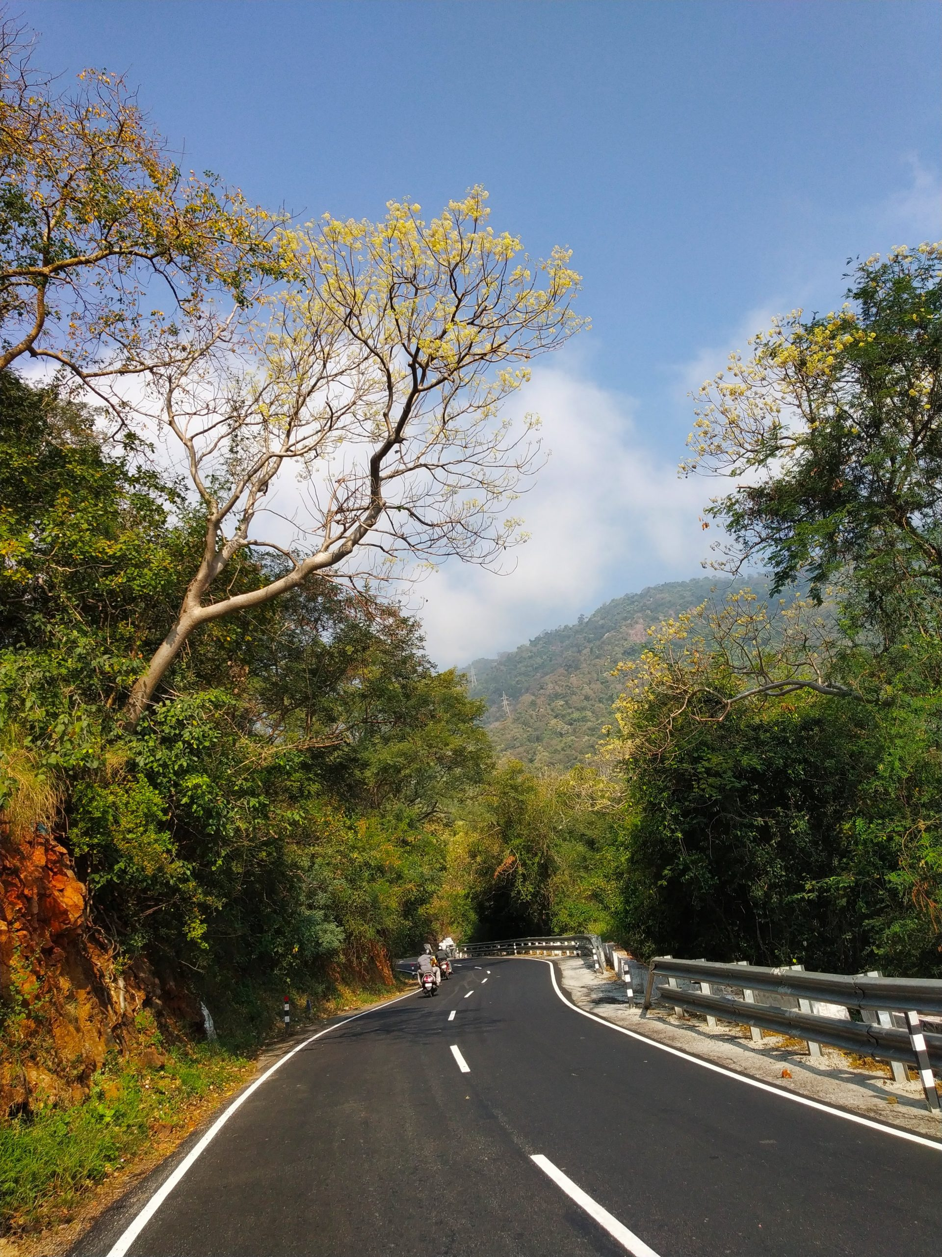 Road to kothagiri hill station