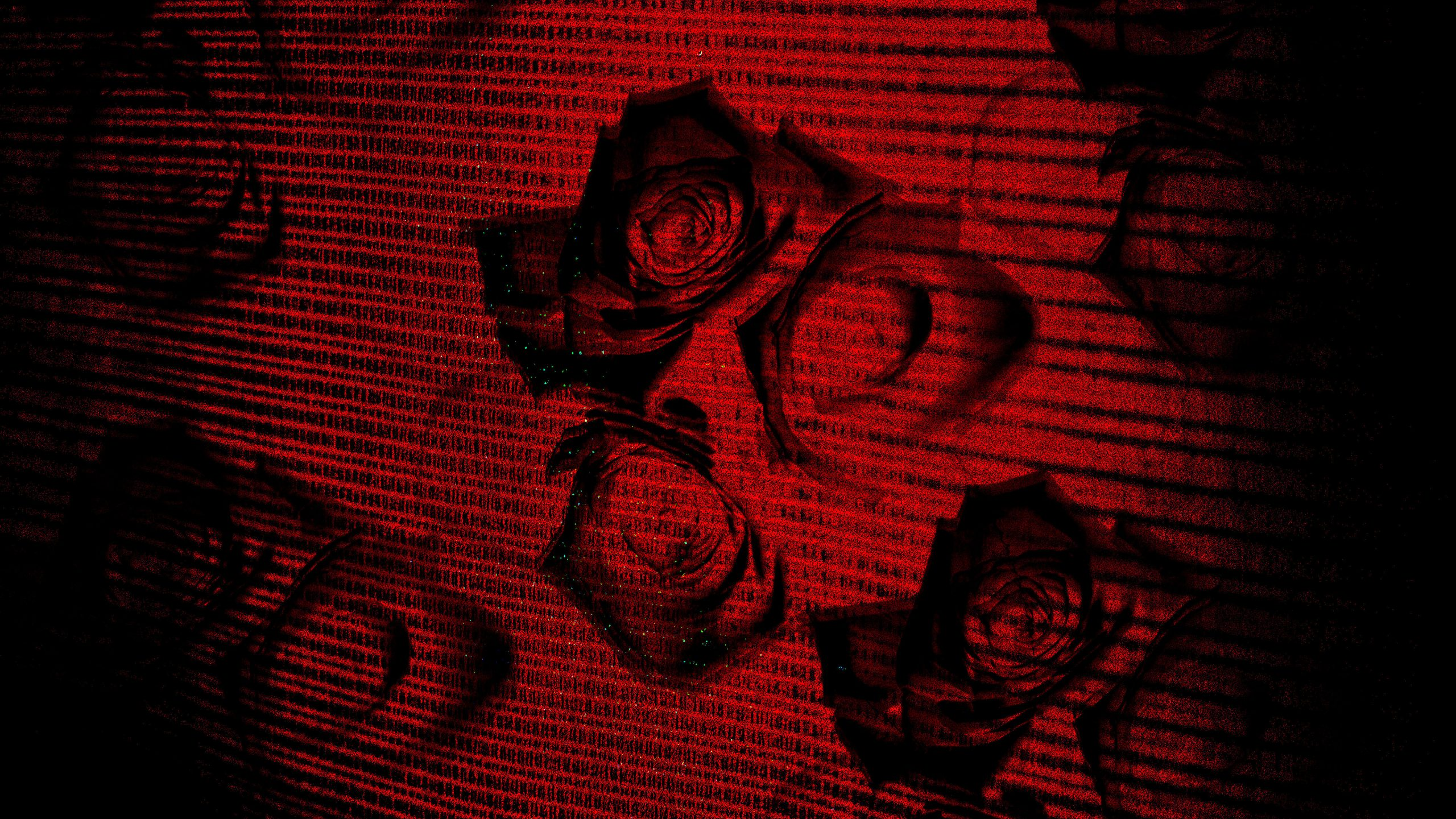 Rose background wallpaper