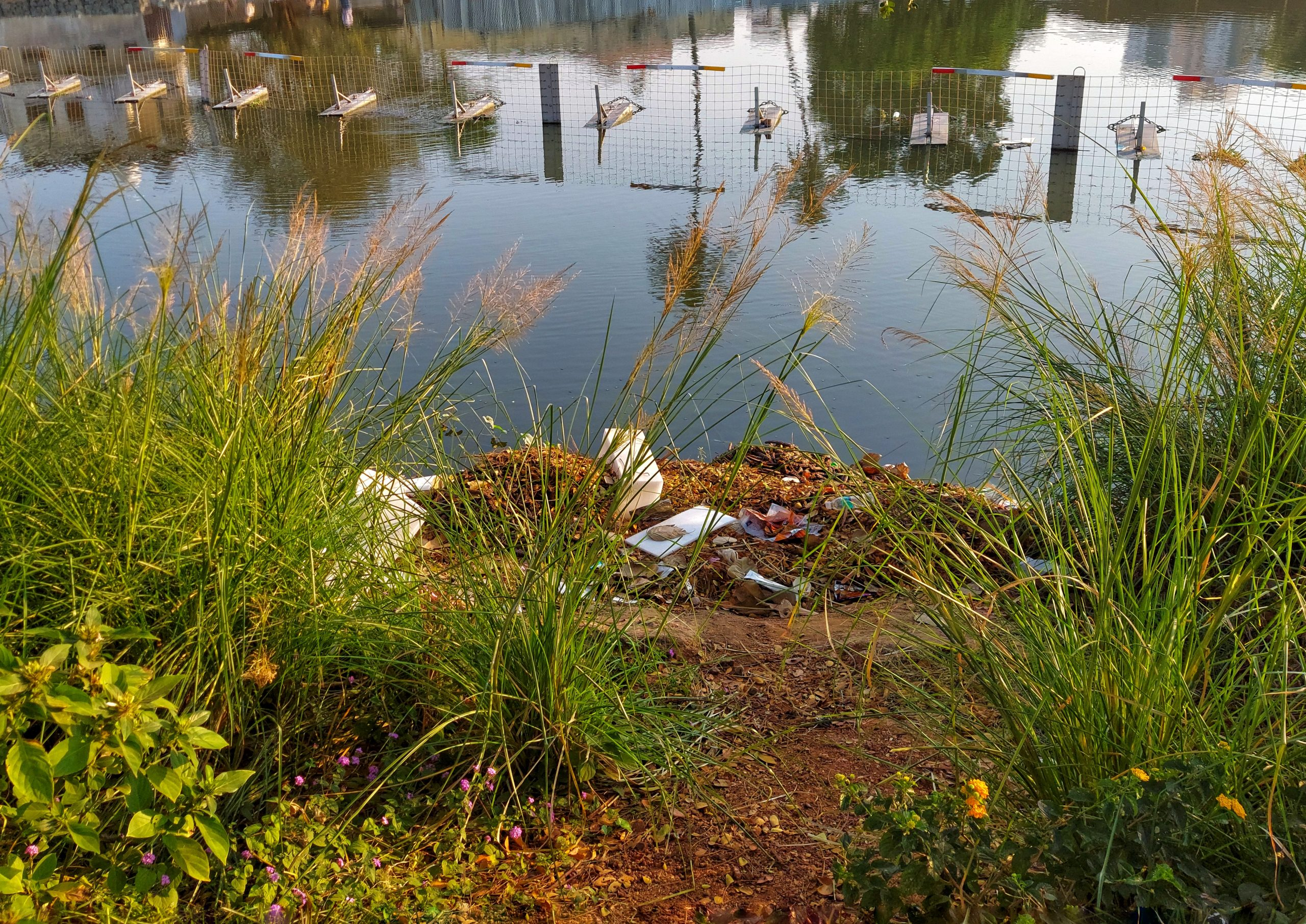 Waste in a lake water