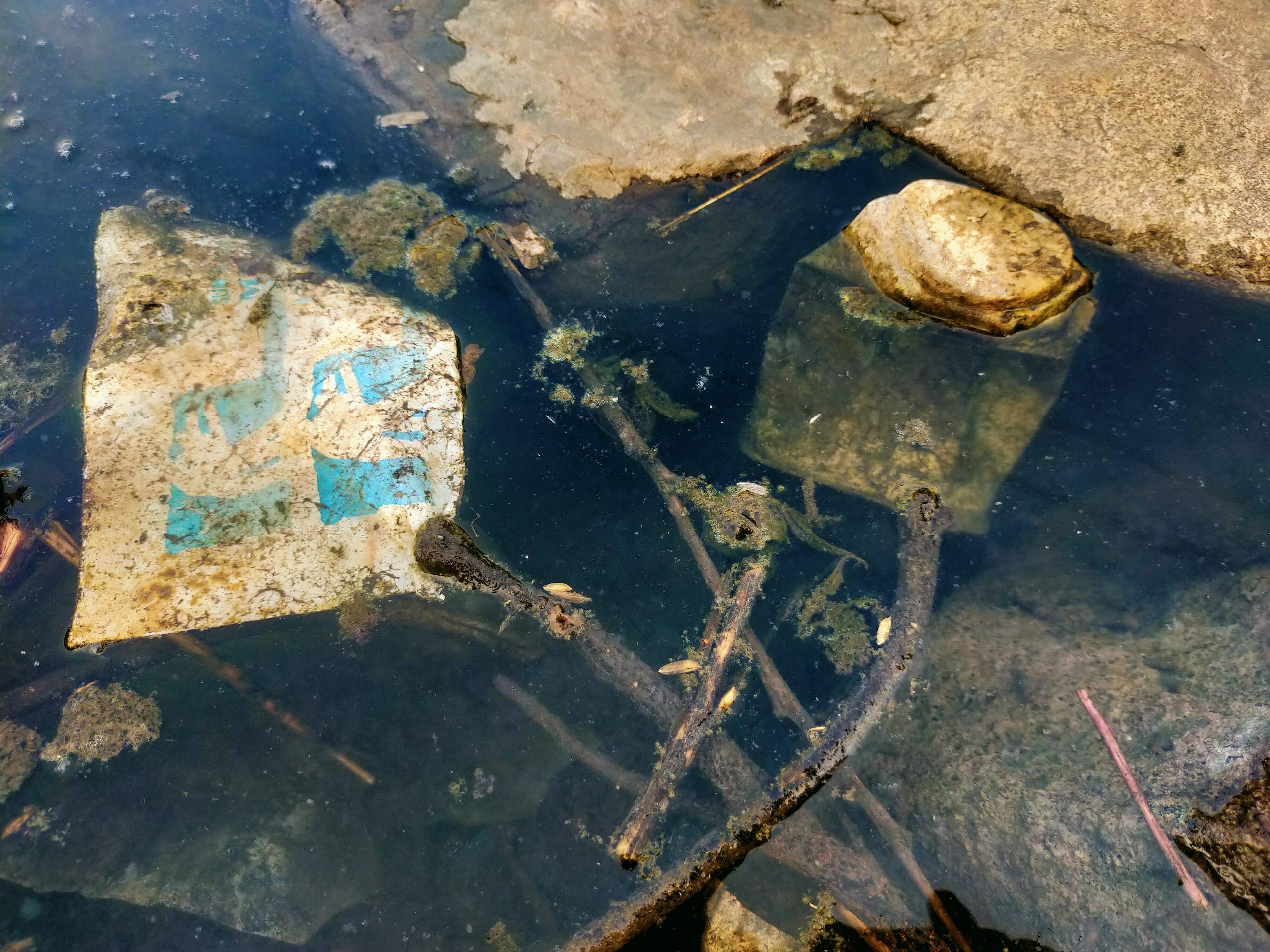 Waste in a water resource
