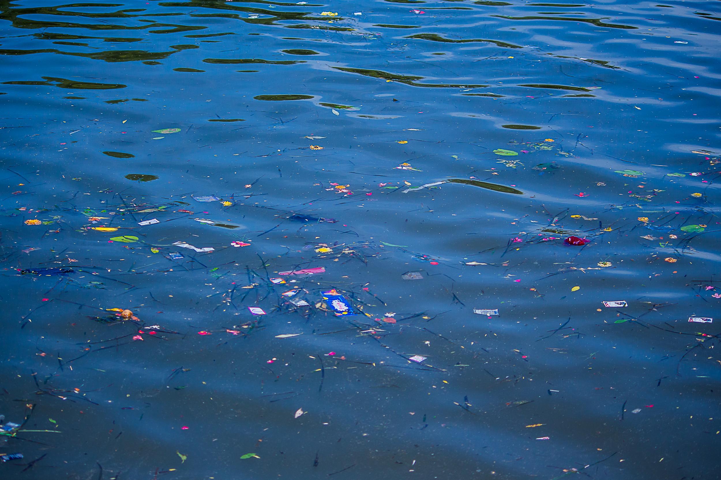 Waste material floating in a river