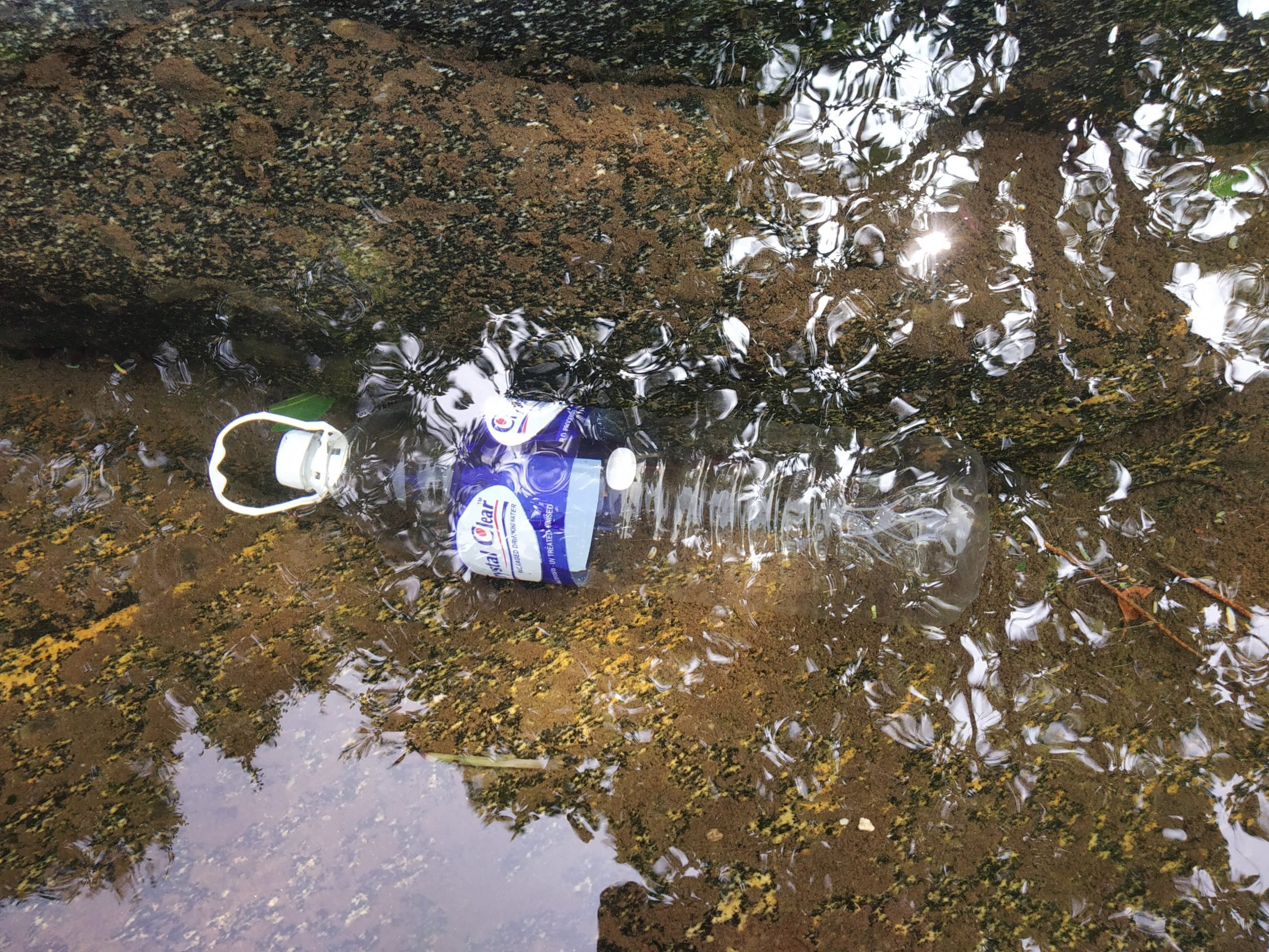 Plastic bottle in the pond