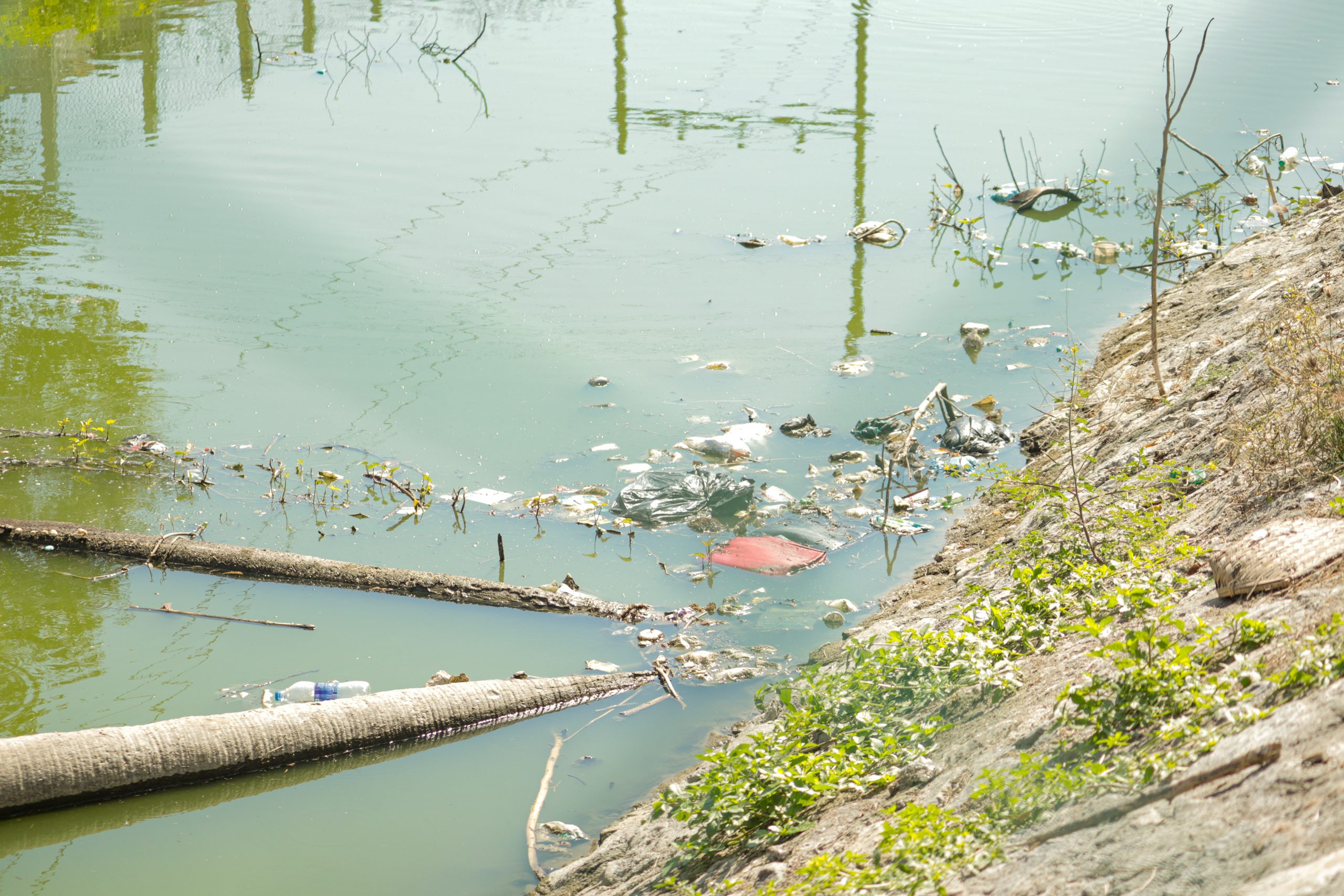 Polluted water resource