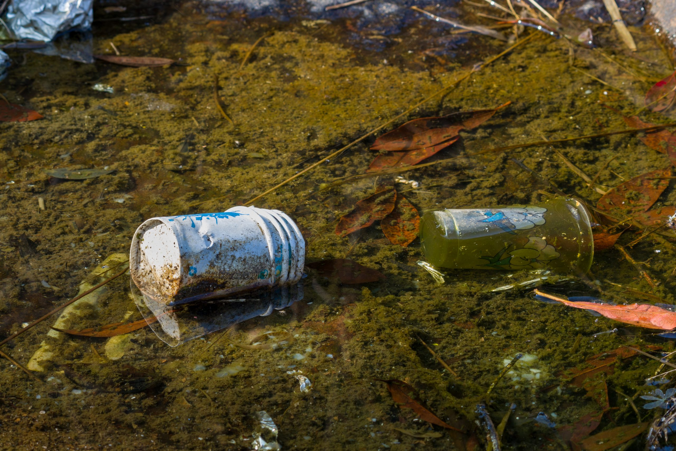 Waste and litter polluting water