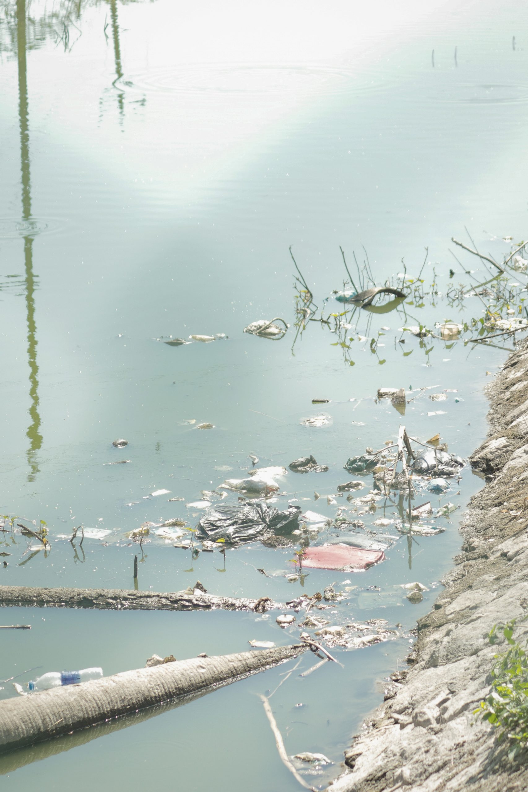 Water pollution in the river