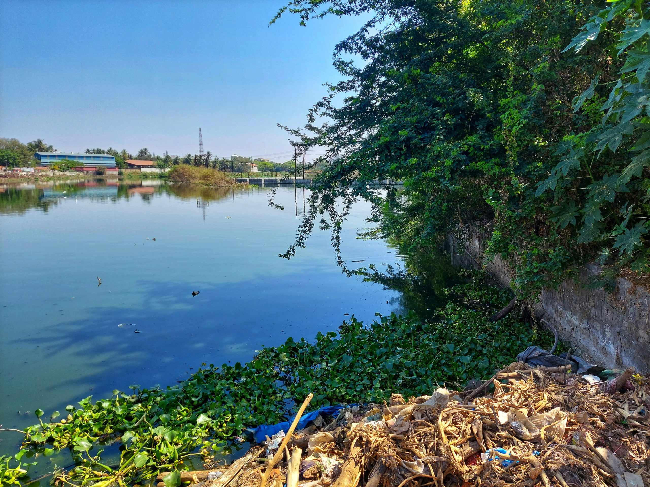 Water pollution due to waste dumps and water plants