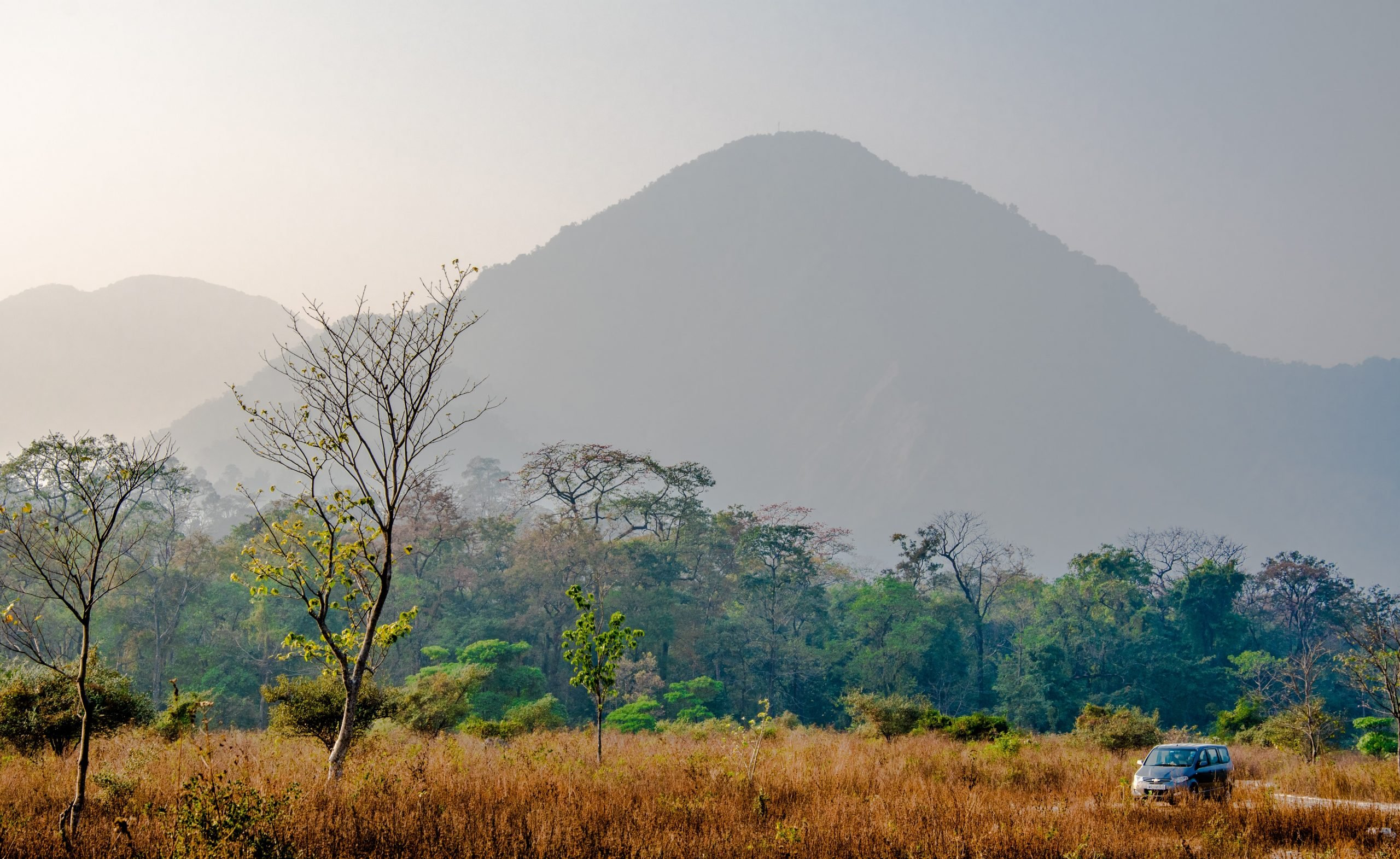 Mountains and a jungle