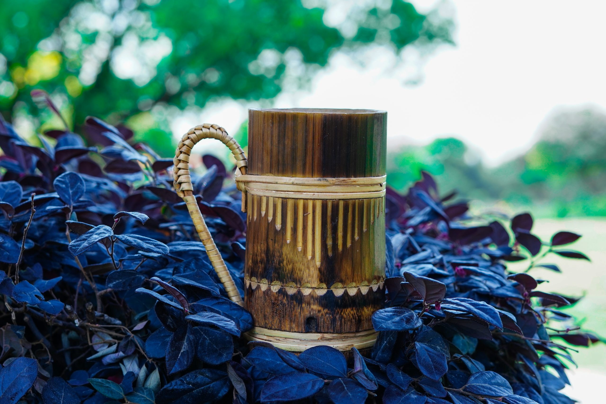 Wooden mug on the plant leaves