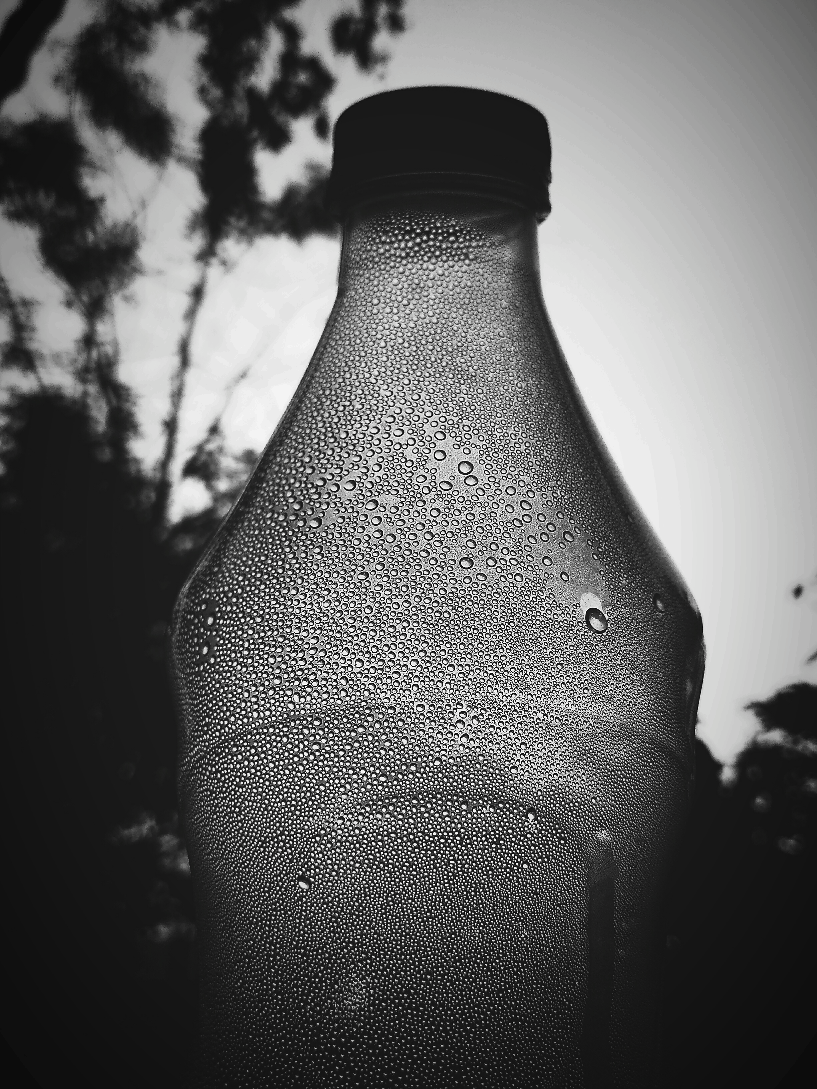 Condensation in a plastic bottle
