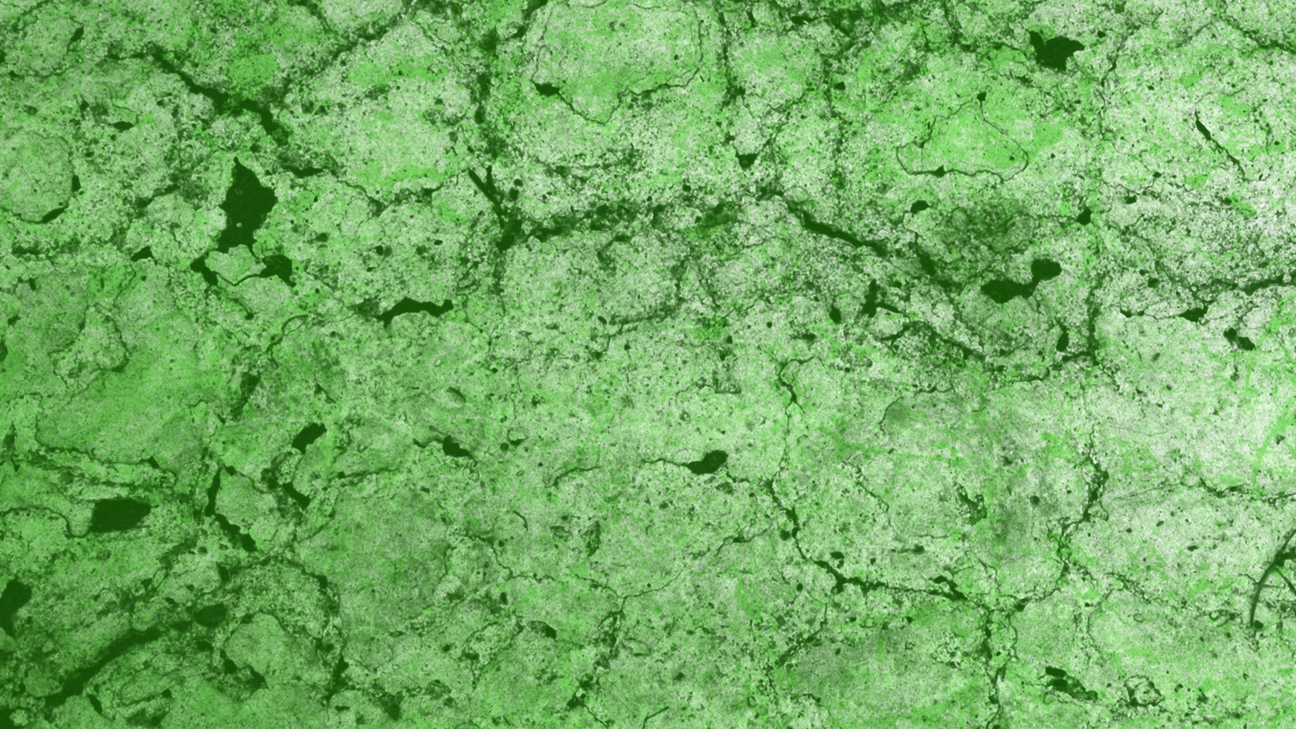 green-texture-background