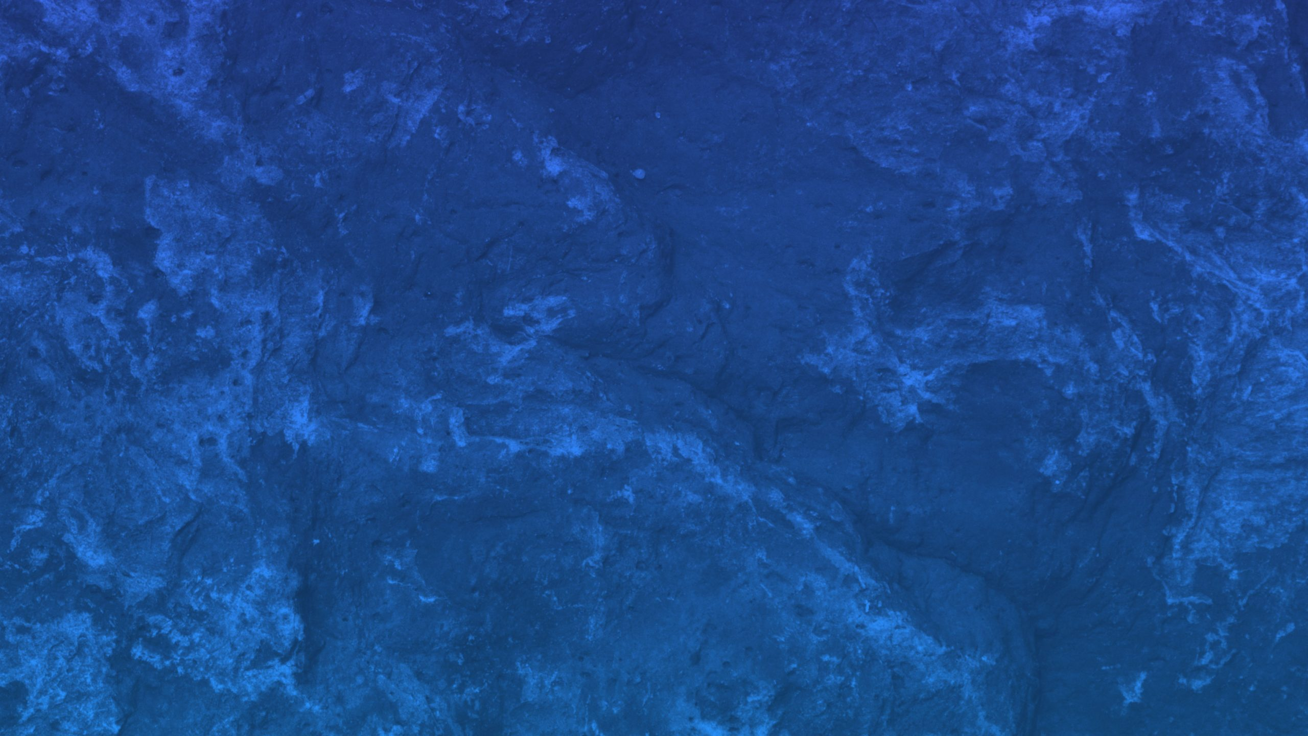 Blue textured wallpaper