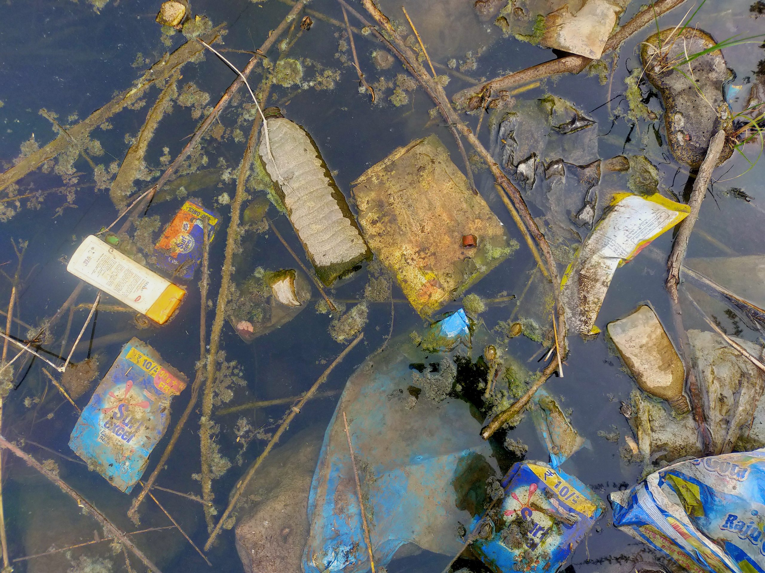 Garbage polluting the water