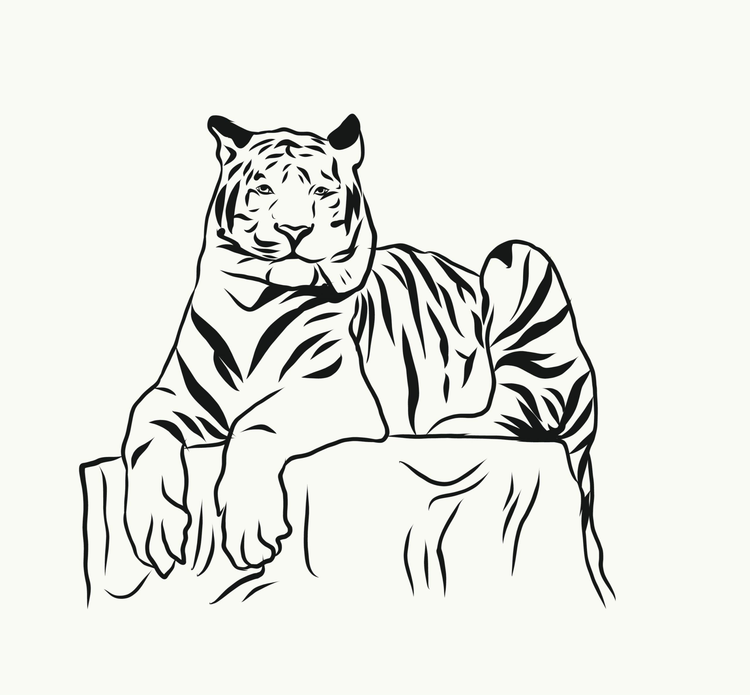 A Bengal tiger illustration