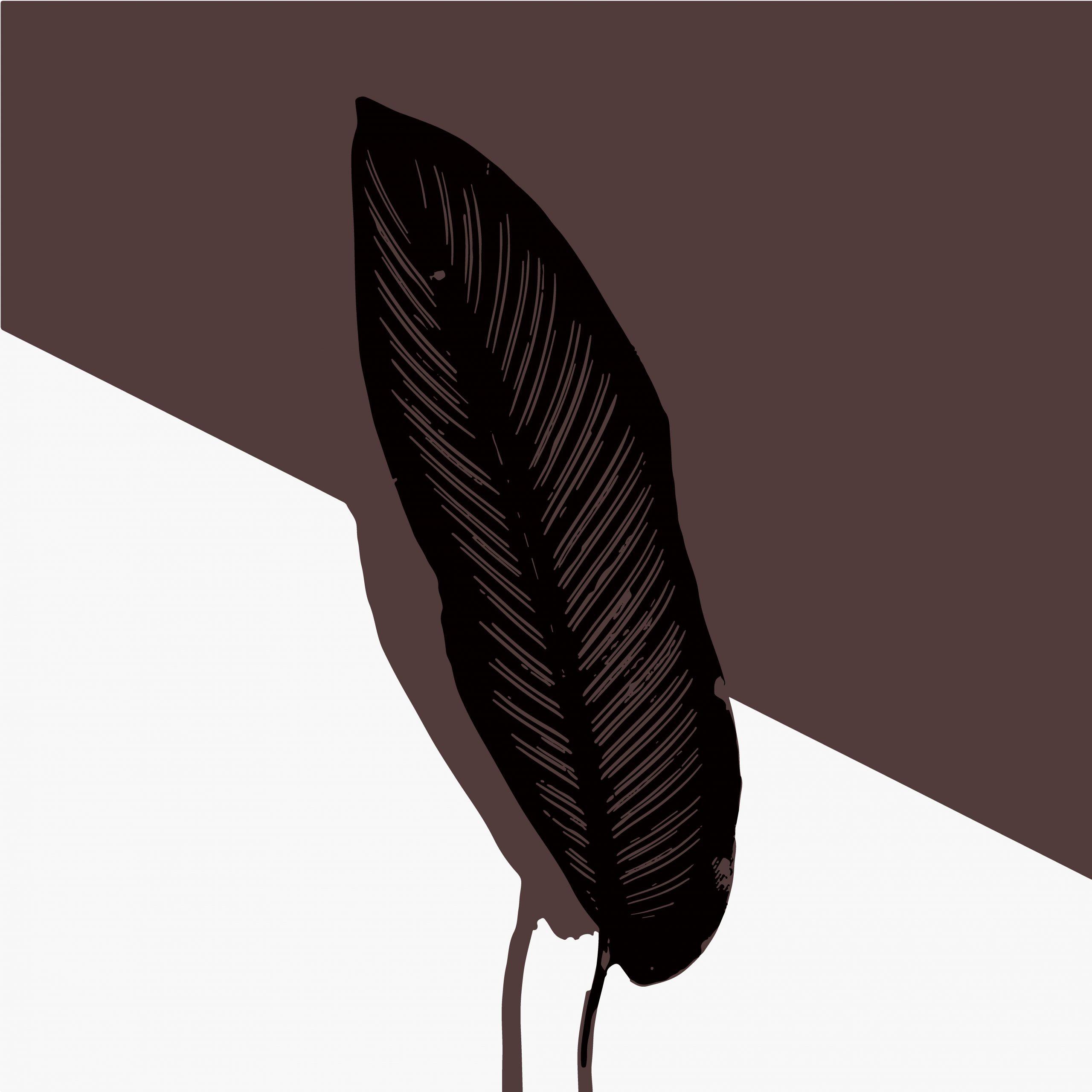 A leaf illustration