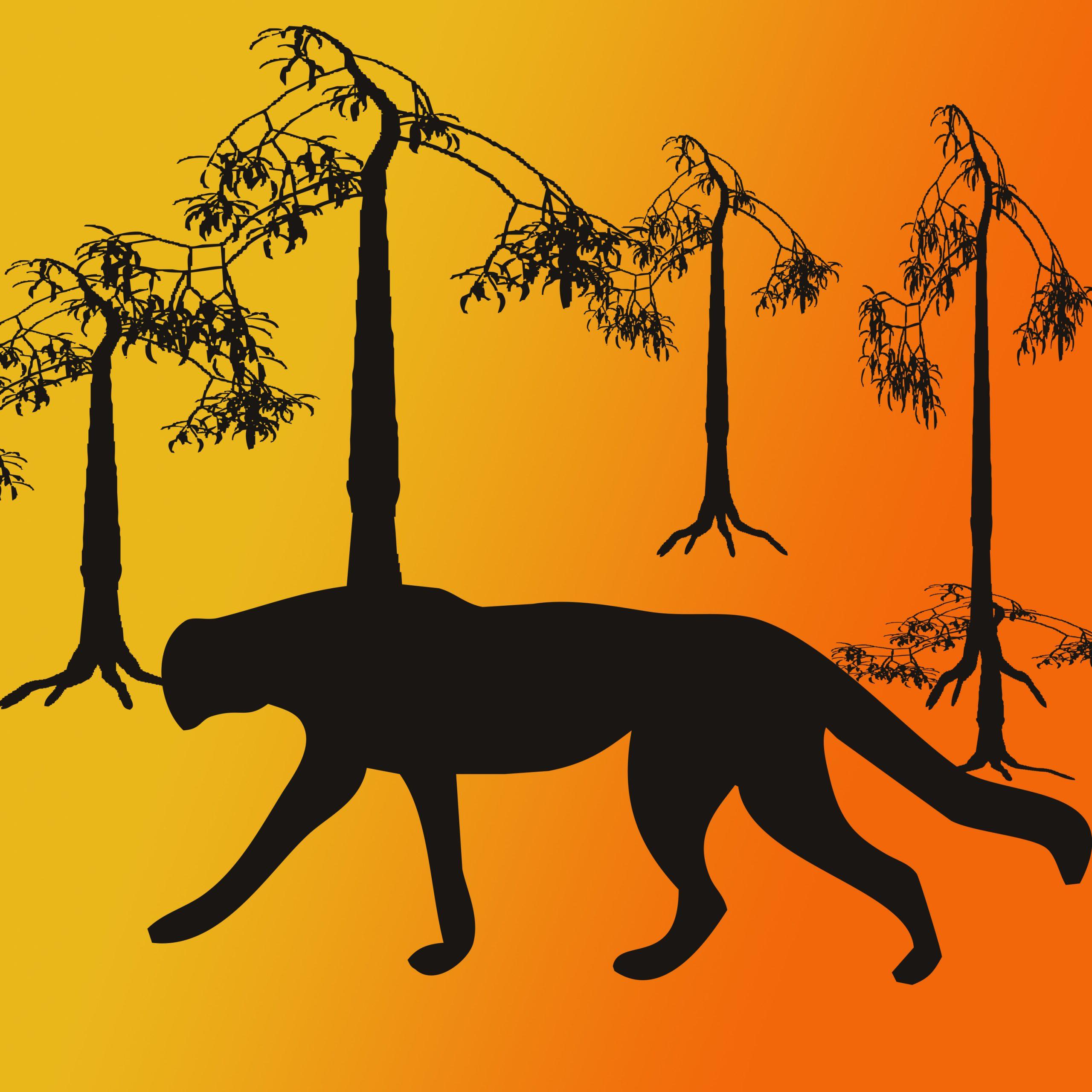 A leopard illustration