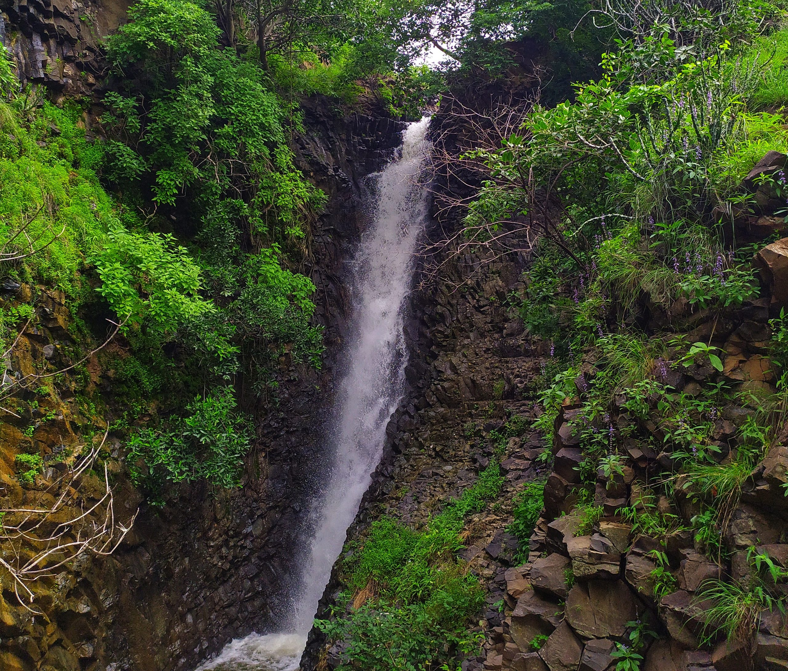 A narrow waterfall in a jungle