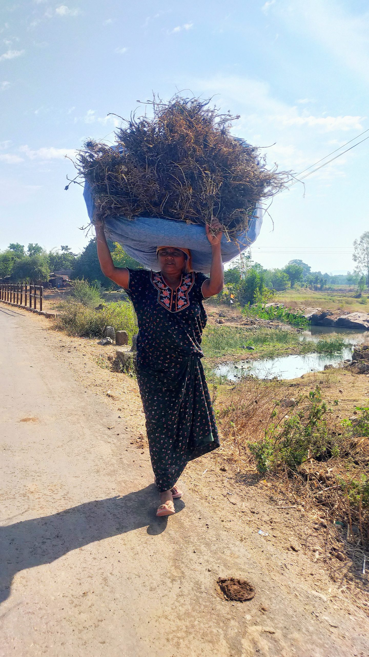A village woman carrying animal fodder