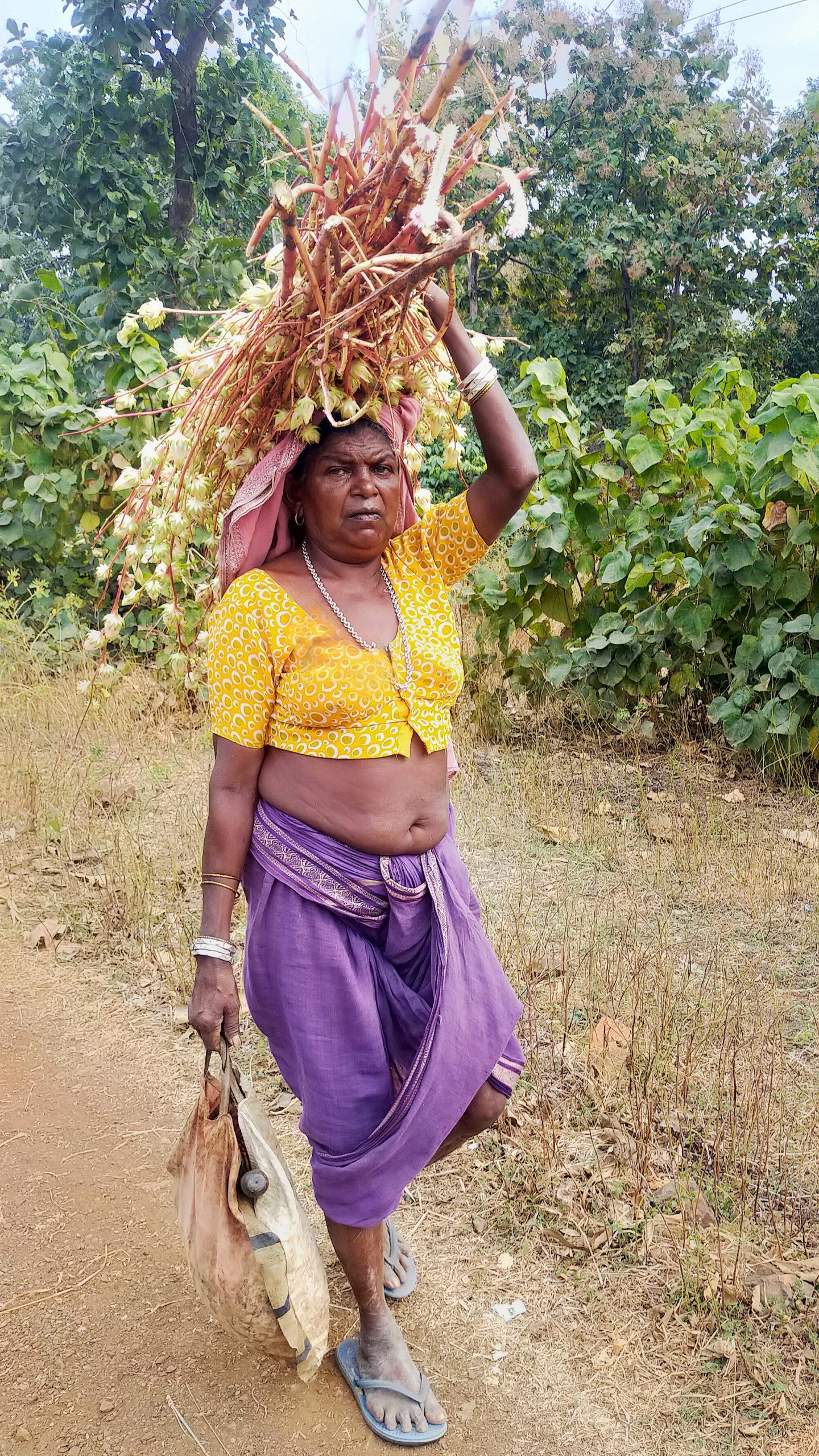 A village woman carrying fodder