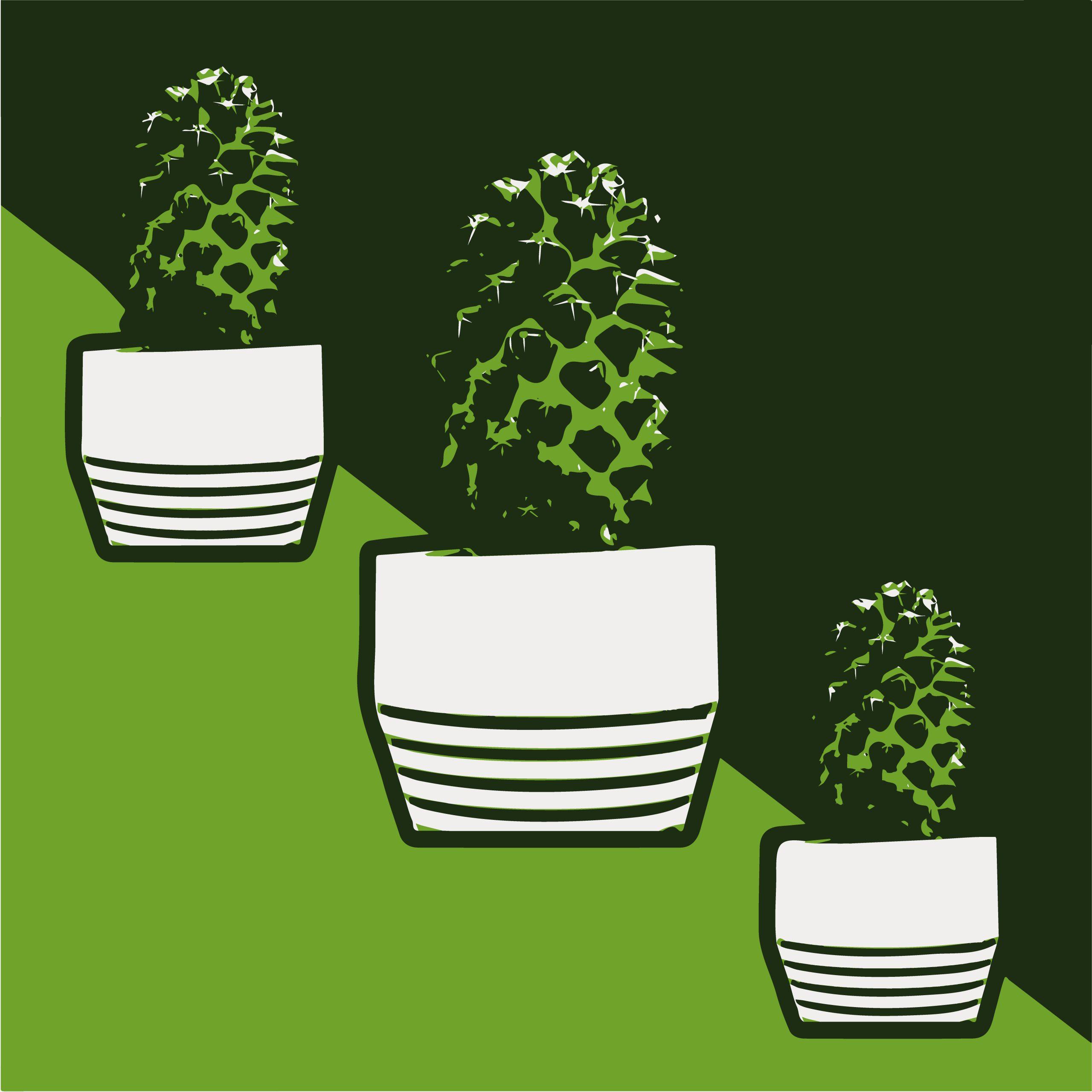 Cactus houseplants illustration