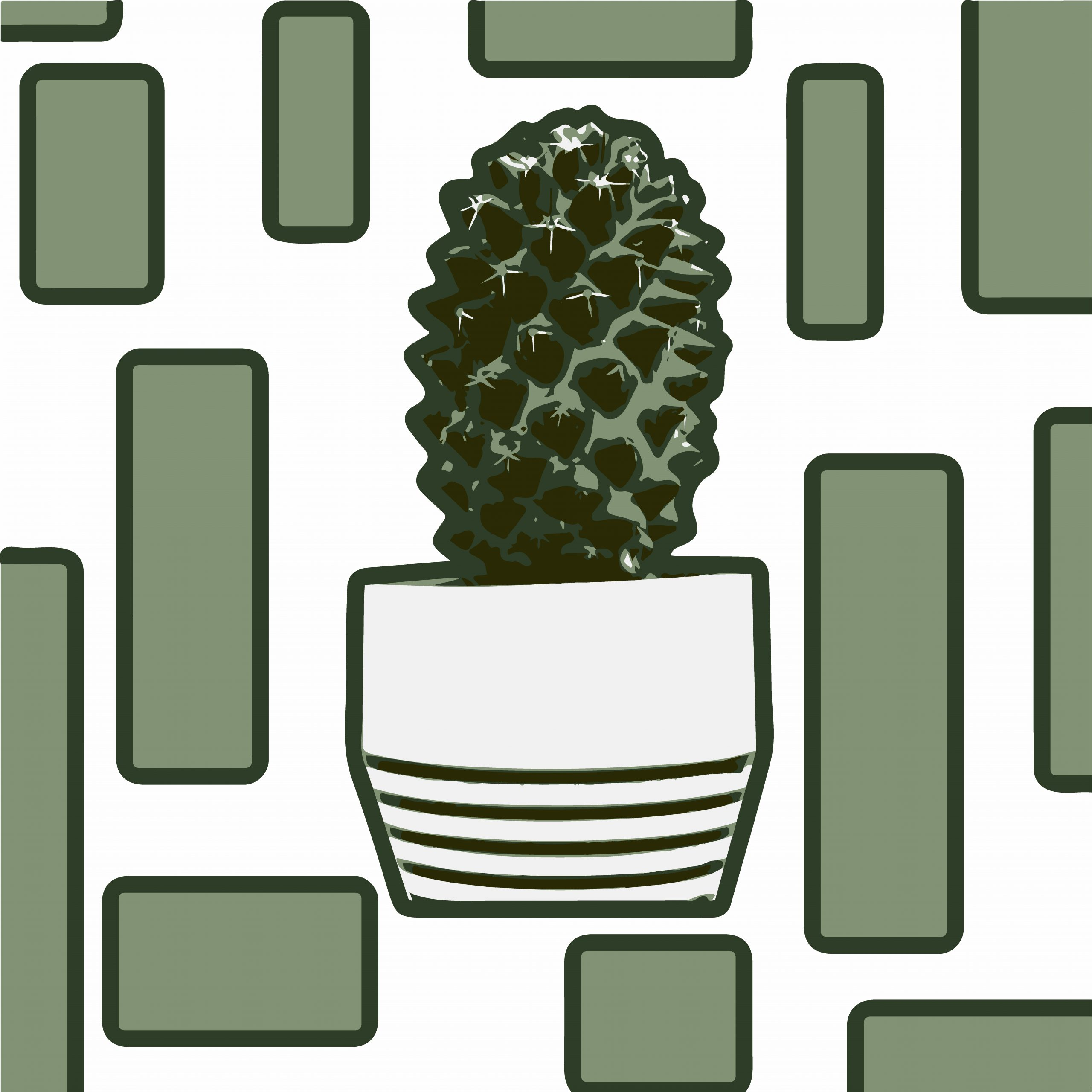 Cactus plant illustration