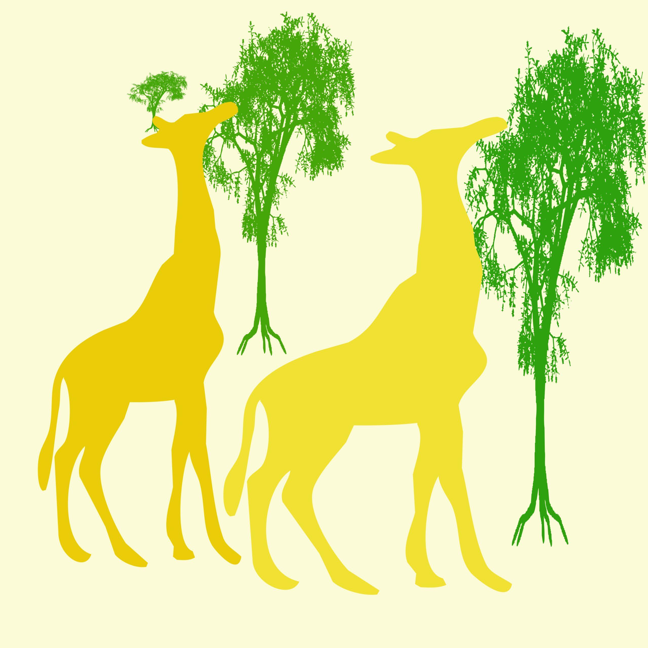 Giraffe and trees illustration