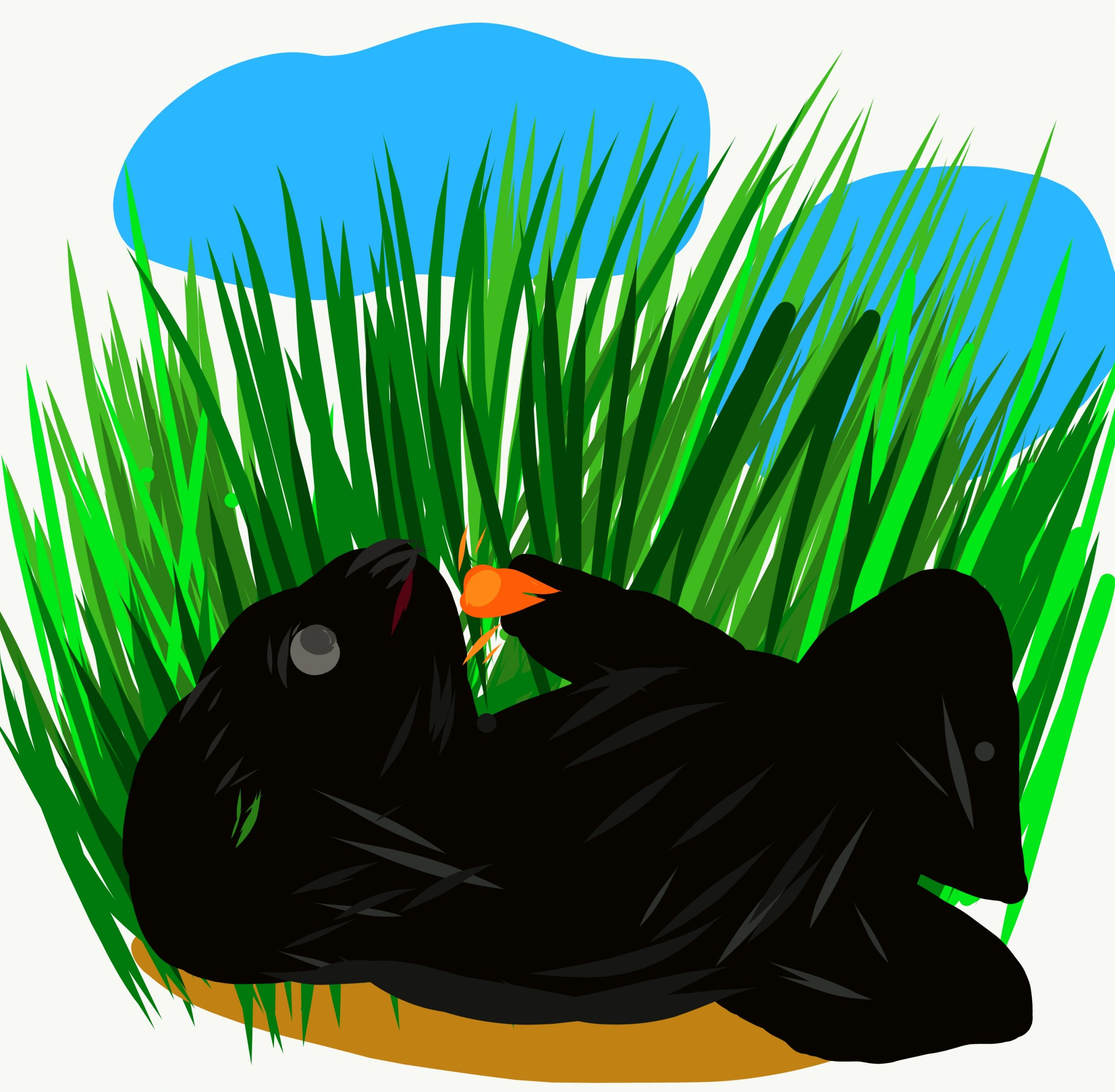 Grass and an animals illustration