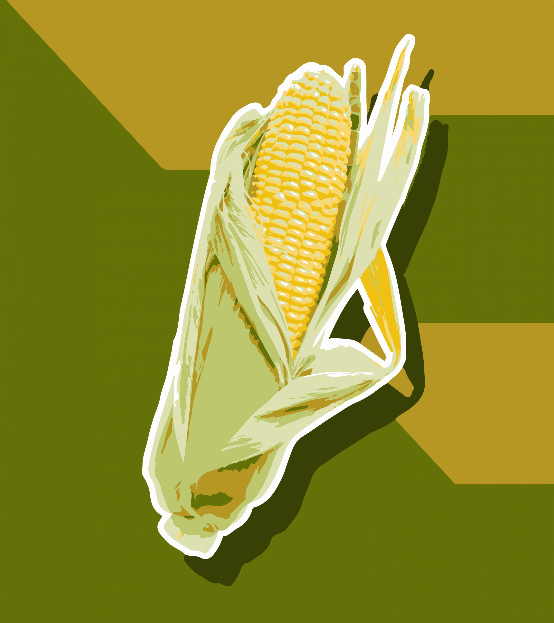 A corn cob