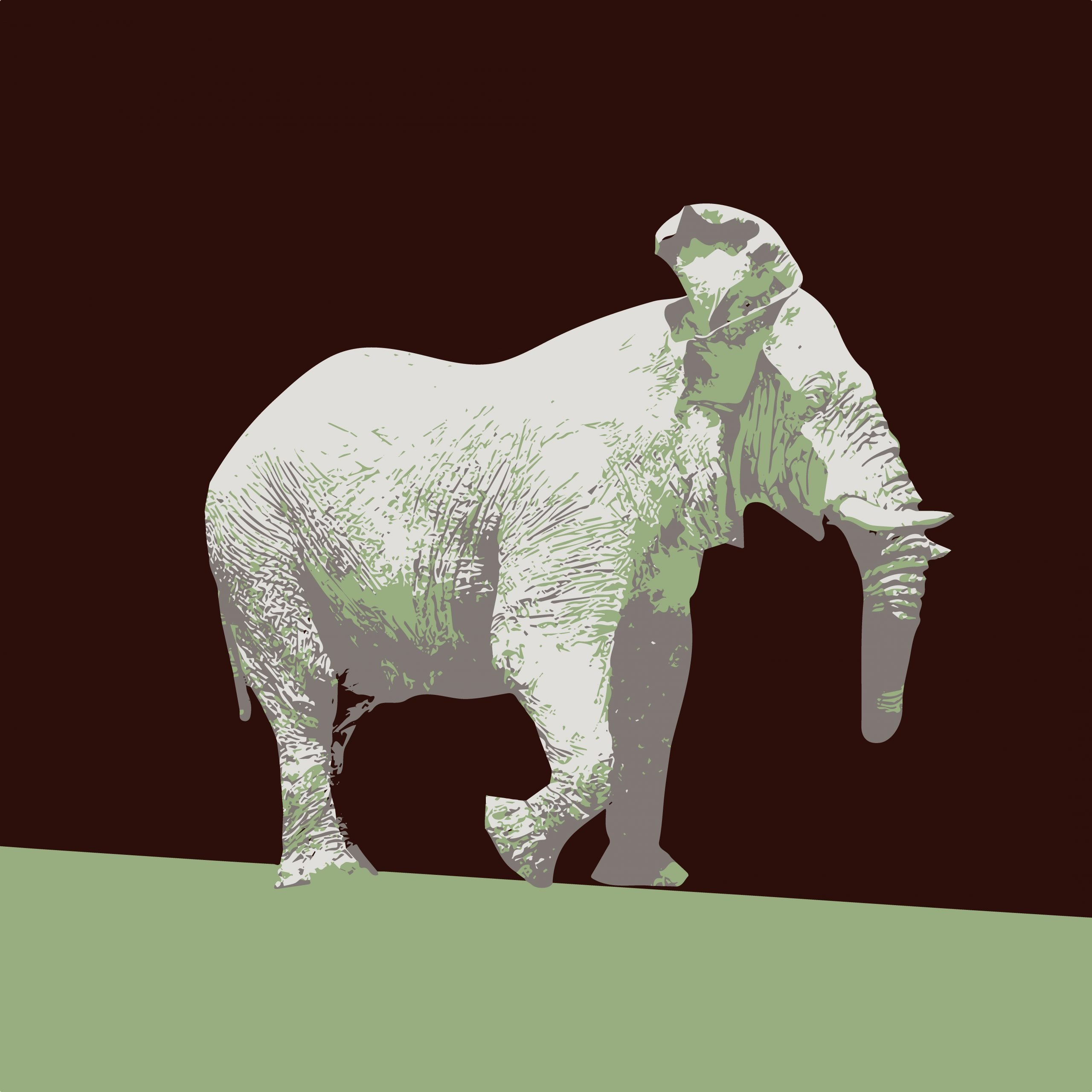 Illustration of a white elephant